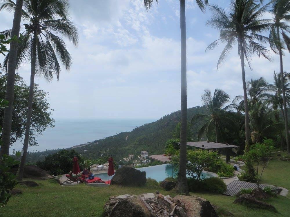 Photo 2: Paradise - Le Jungle Club Hôtel