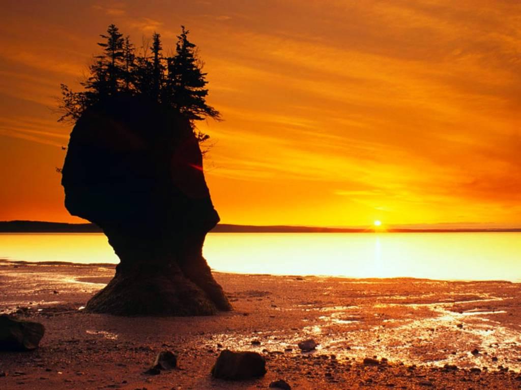 Photo 1: Hopewell Rocks, les plus grandes marées du monde!