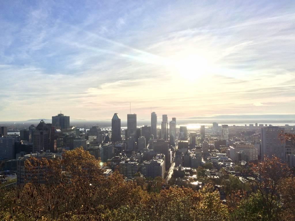Photo 2: Parc du Mont-Royal