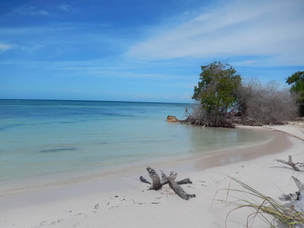Photo 2: Cuba Hasta Siempre