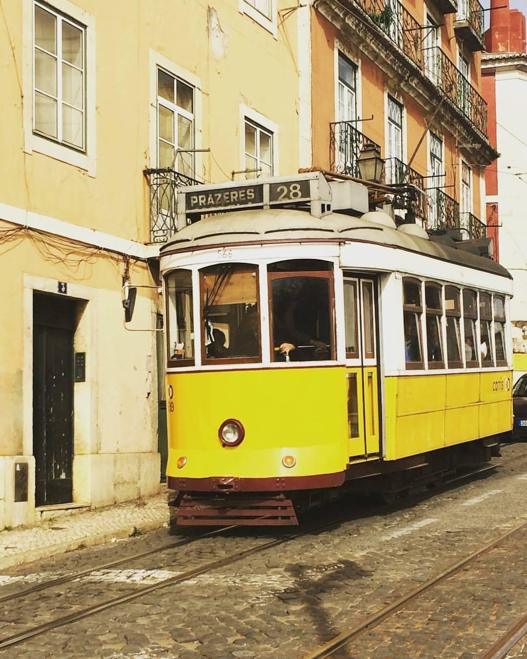 Photo 1: Visite hors des sentiers battus de Lisbonne