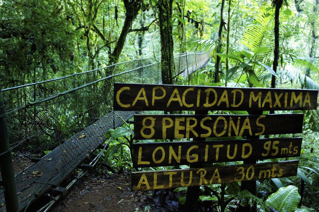 Photo 3: Parc du Heliconias Lodge