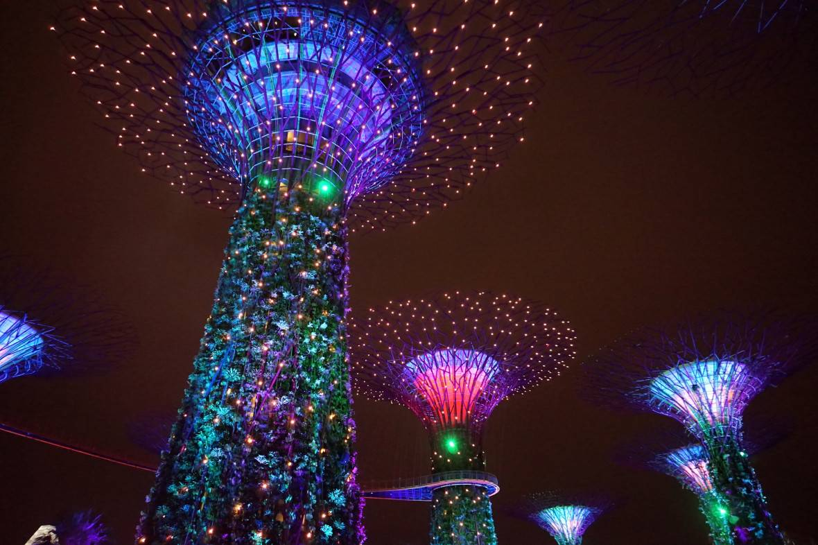 Photo 1: Gardens by the bay - Singapour