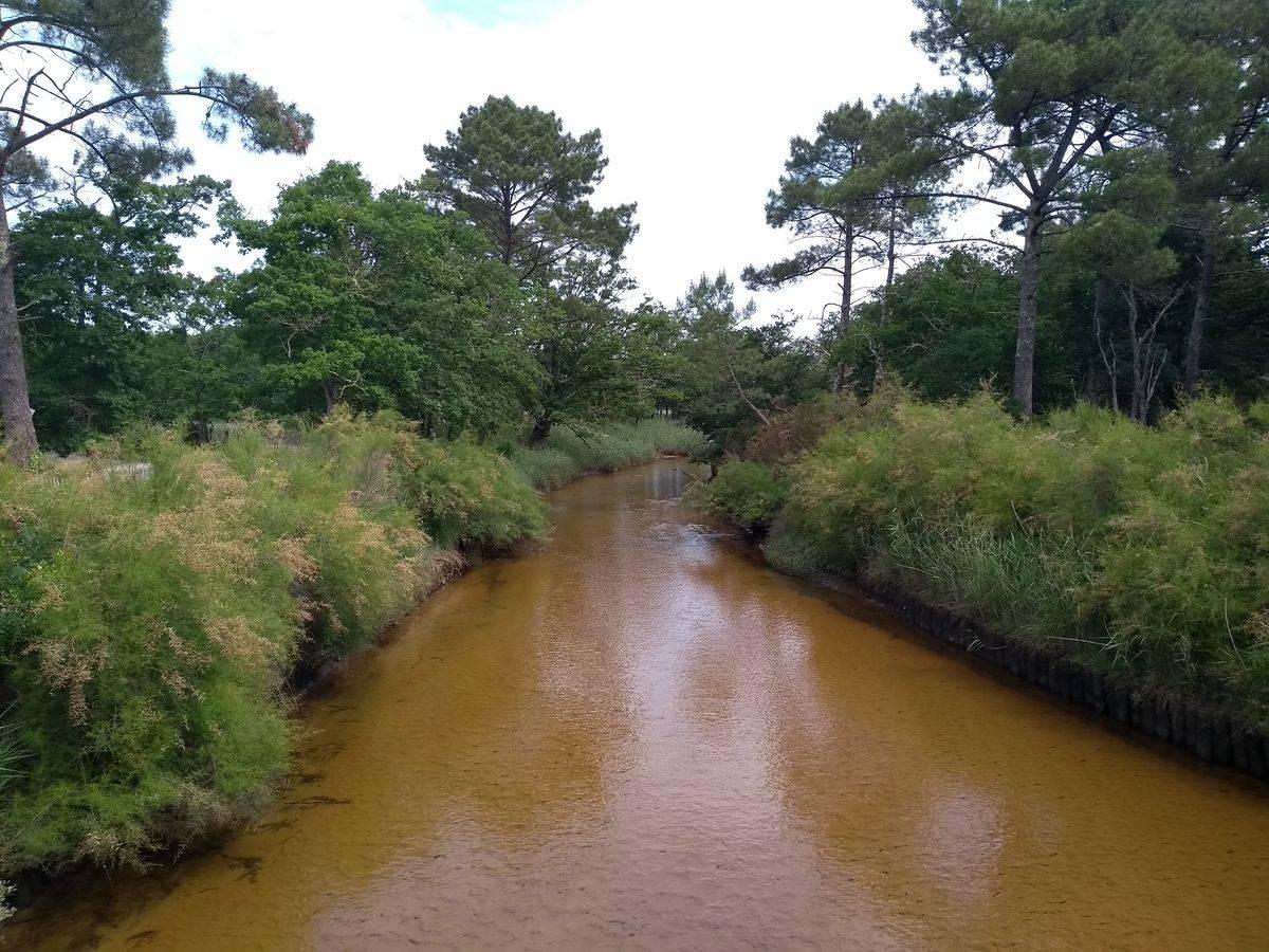 Photo 2: Sentier du littoral