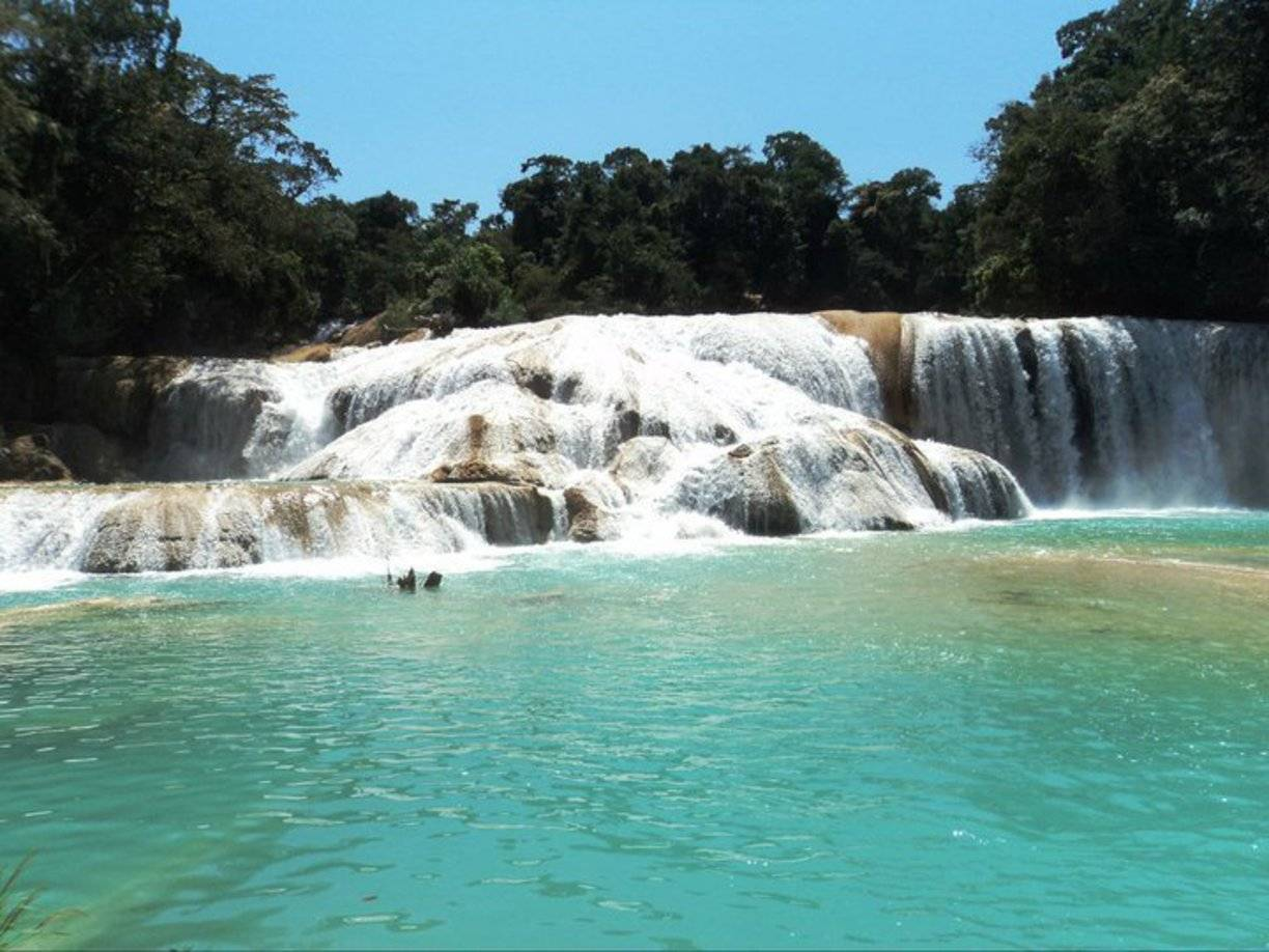 Photo 3: Agua Azul, Chiapas, Mexique