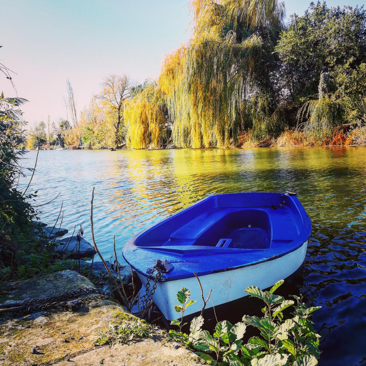 Photo 1: Balade à vélo dans le Marais Poitevin