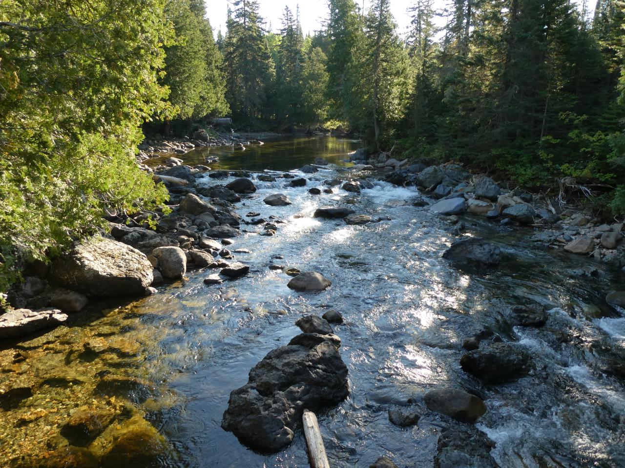 Photo 2: Parc de la Gaspésie et le Mont-Albert