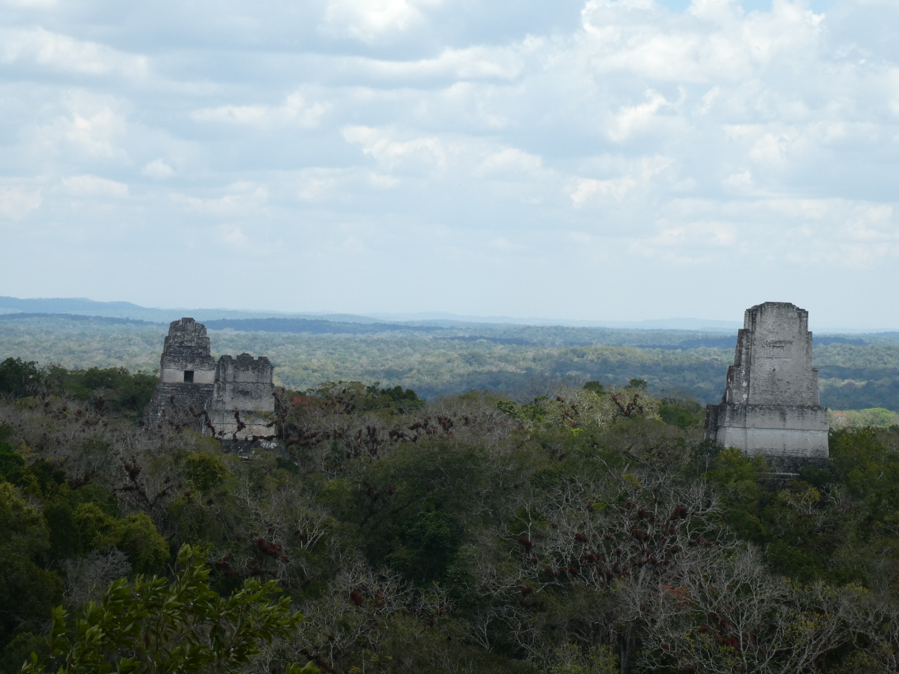 Photo 1: Tikal, la merveille - Guatemala