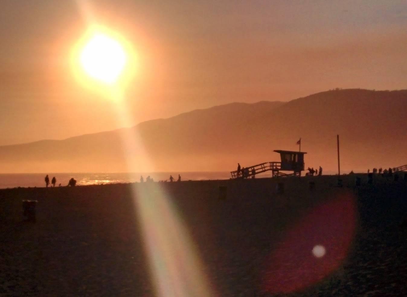 Photo 1: Alerte à Malibu !