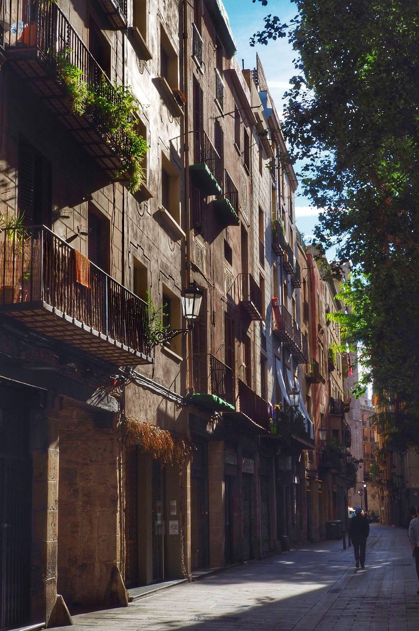 Photo 1: El Barrio Gotico !