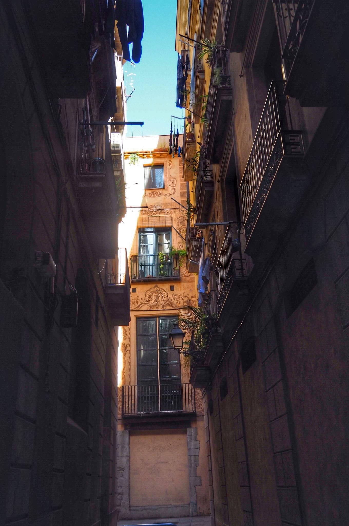 Photo 3: El Barrio Gotico !