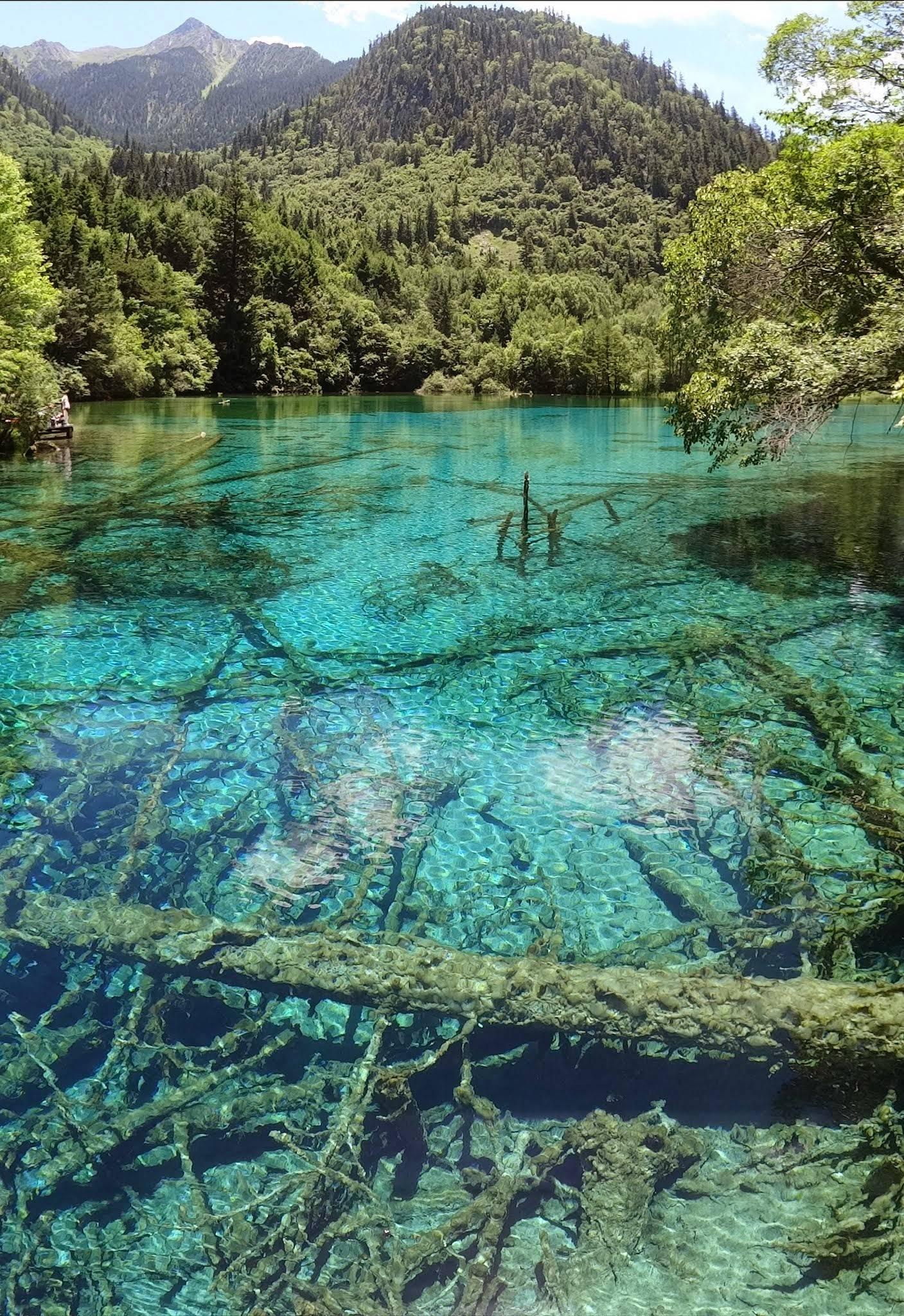 Photo 1: Jiuzhaigou.... Lacs et cascades de rêve