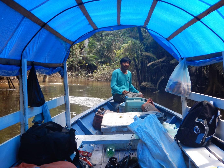 Photo 1: Amazonie : 3 jours de decouverte avec Georges of the Jungle