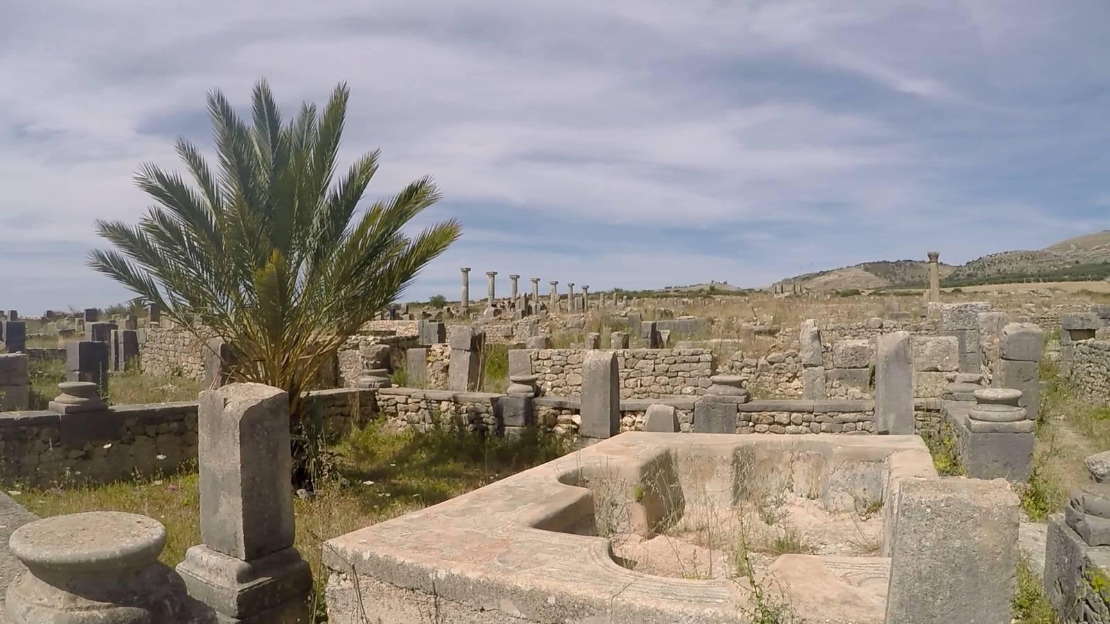 Photo 2: Volubilis - Ruines romaines au Maroc