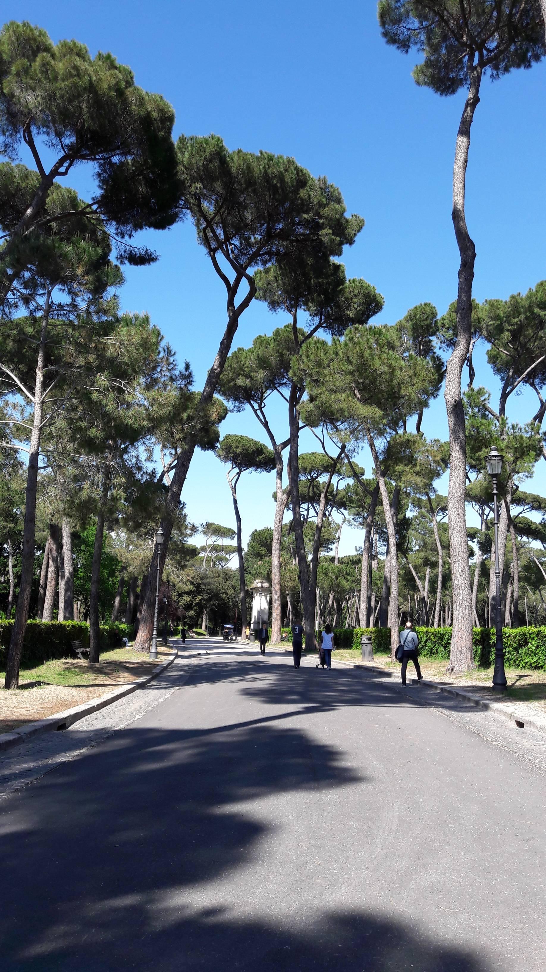Photo 1: Le central park de Rome !