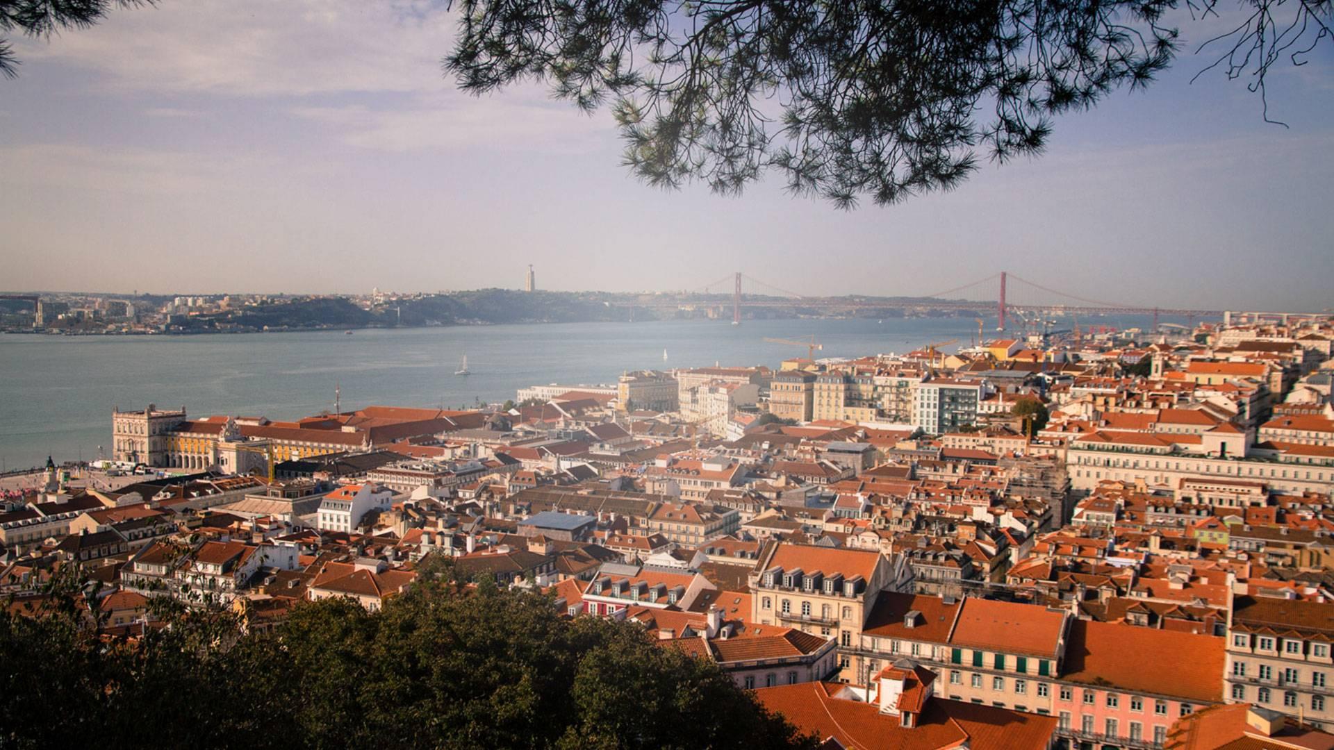 Photo 1: Bien Manger à Lisbonne