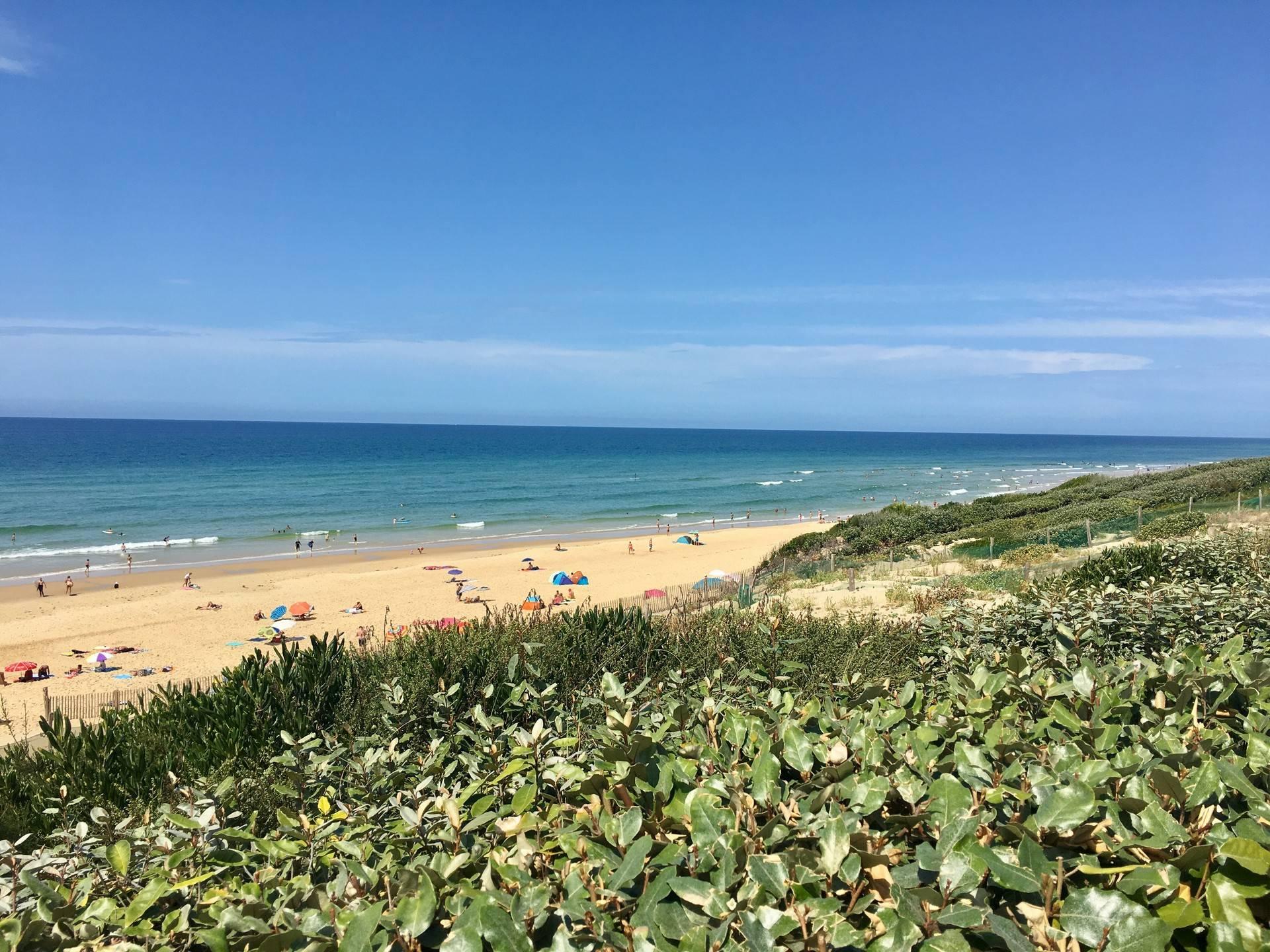 Photo 1: La plage de Bisca