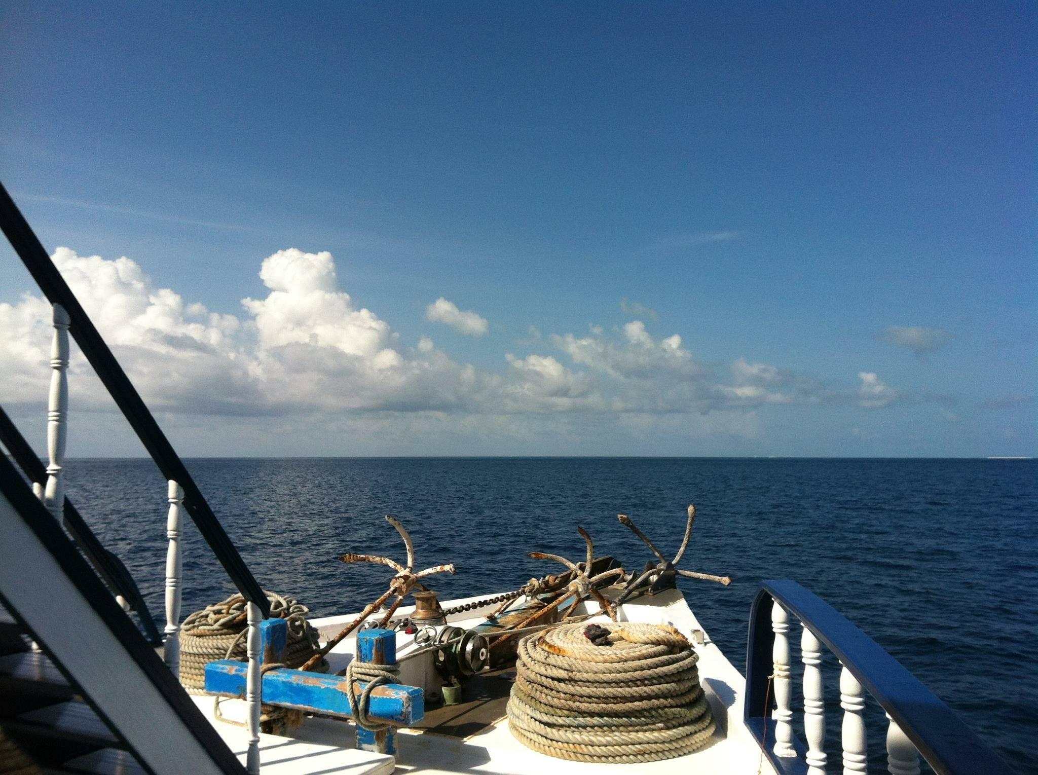 Photo 1: Croisière incontournable pour les inconditionnels de plongée sous-marine