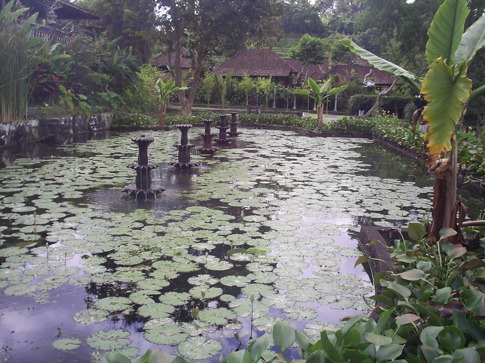 Photo 2: Tirta Gangga, le palais de l'eau