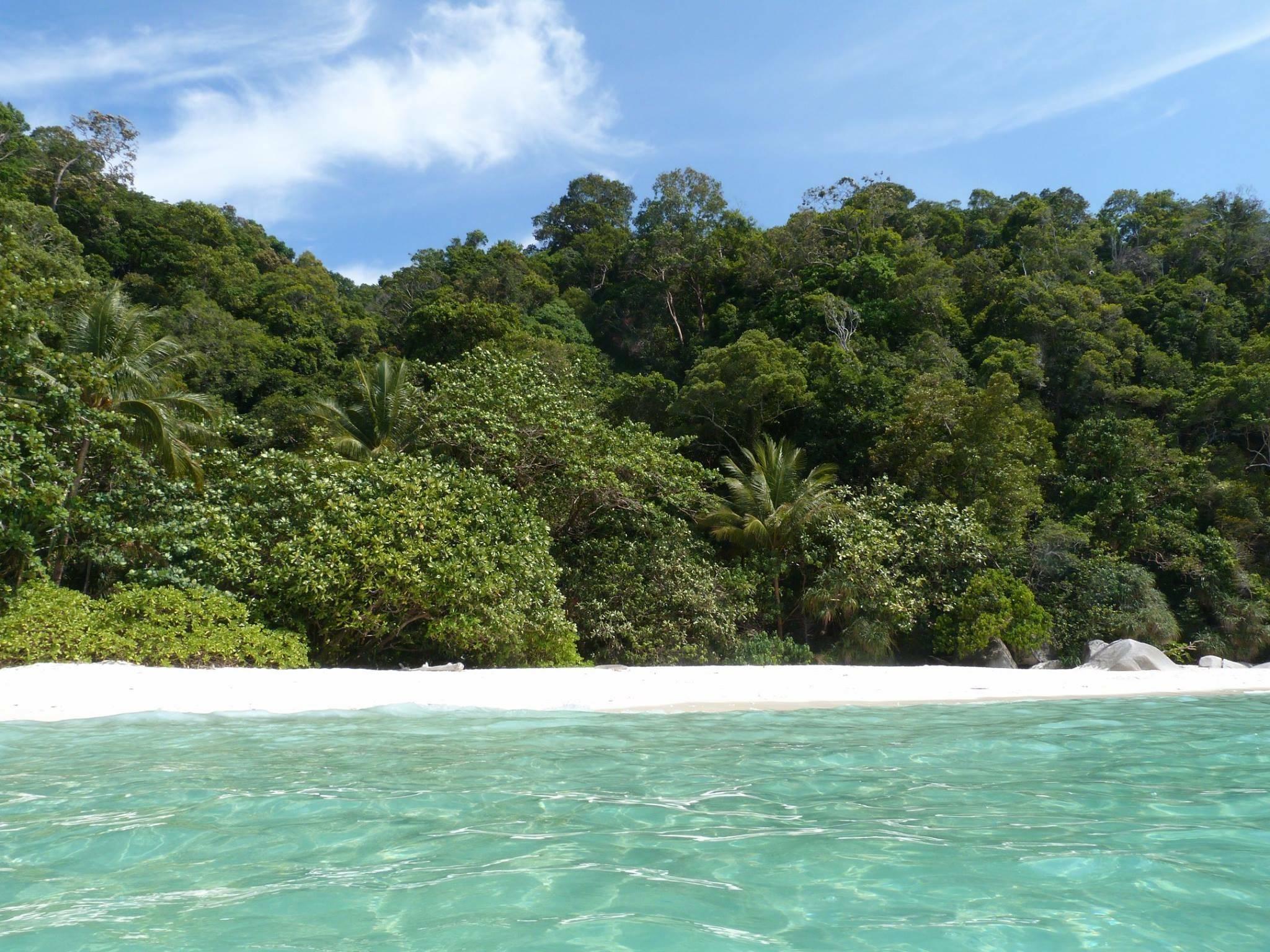 Photo 2: D'Lagoon Teluk Kerma  -  endroit enchanteur