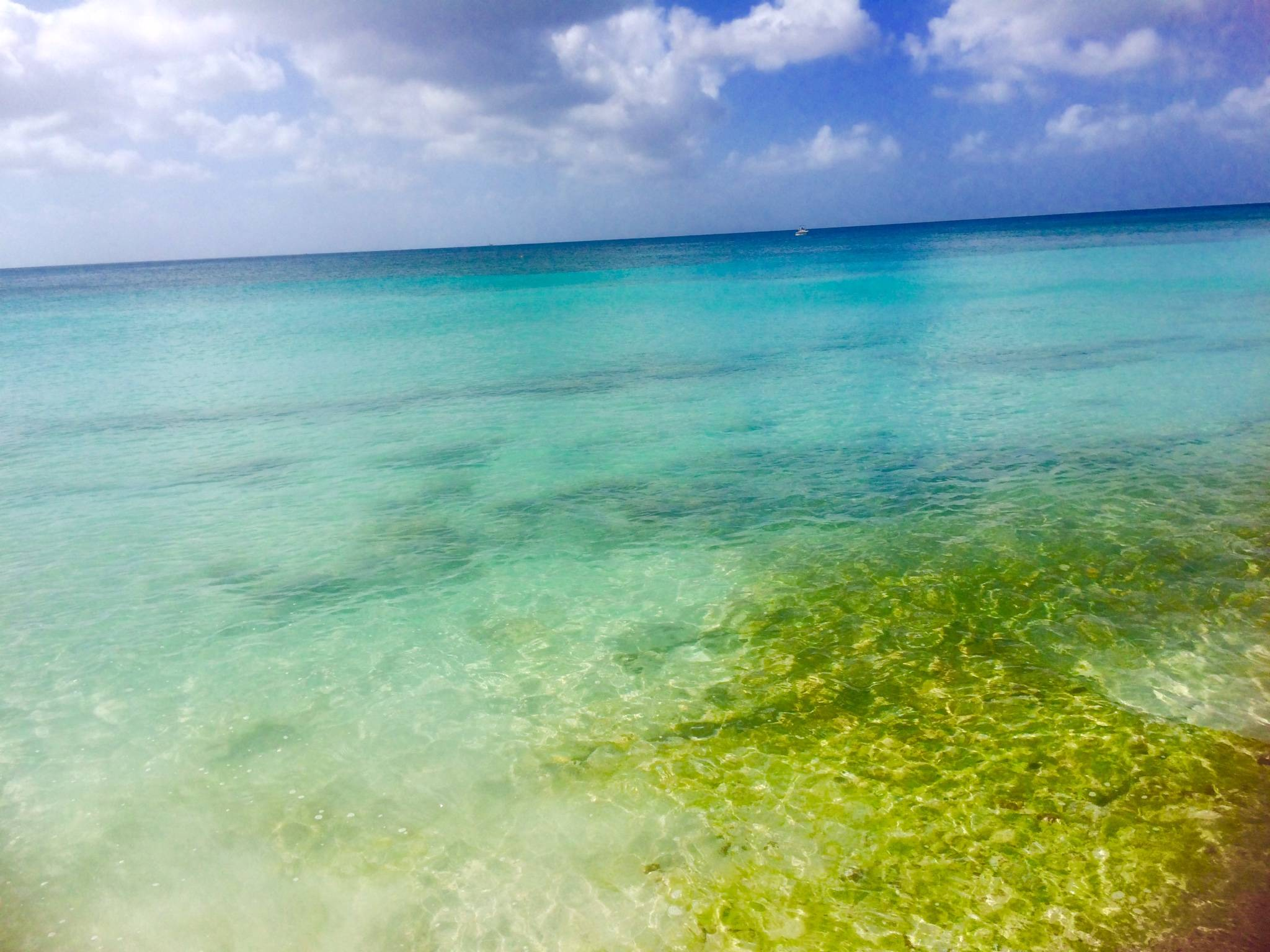 Photo 1: Plongée à la Martinique