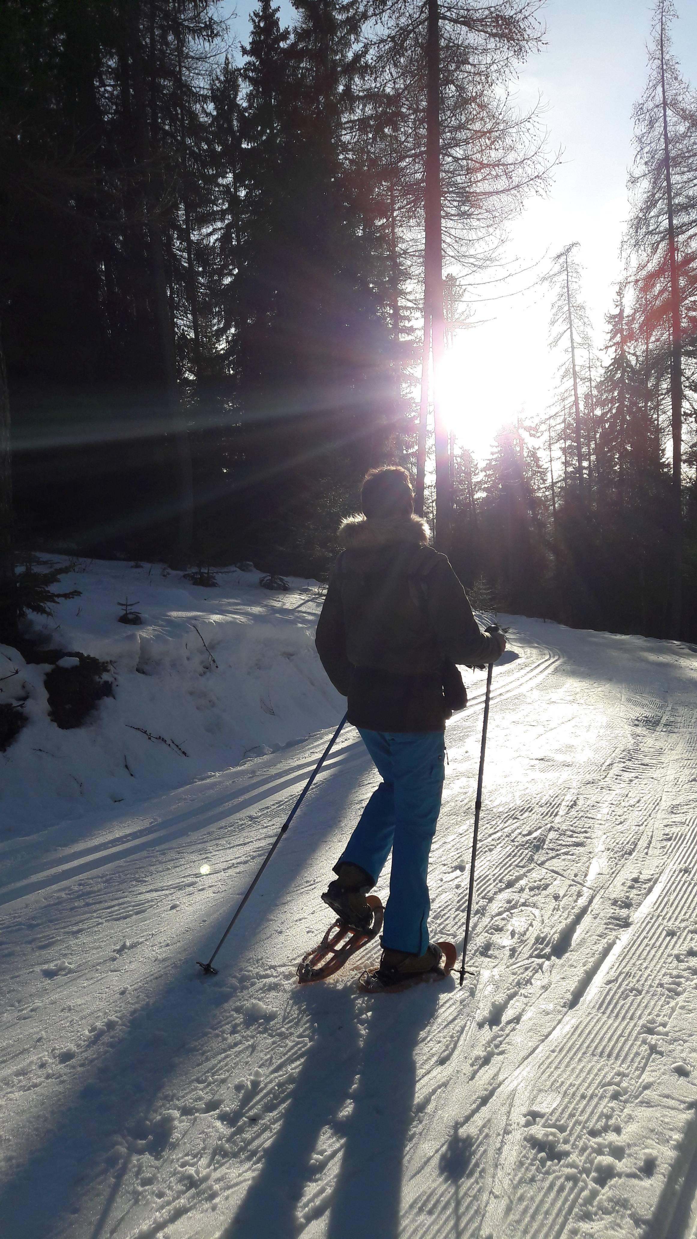 Photo 3: Une super randonnée en raquettes en famille à Colmars-Ratéry