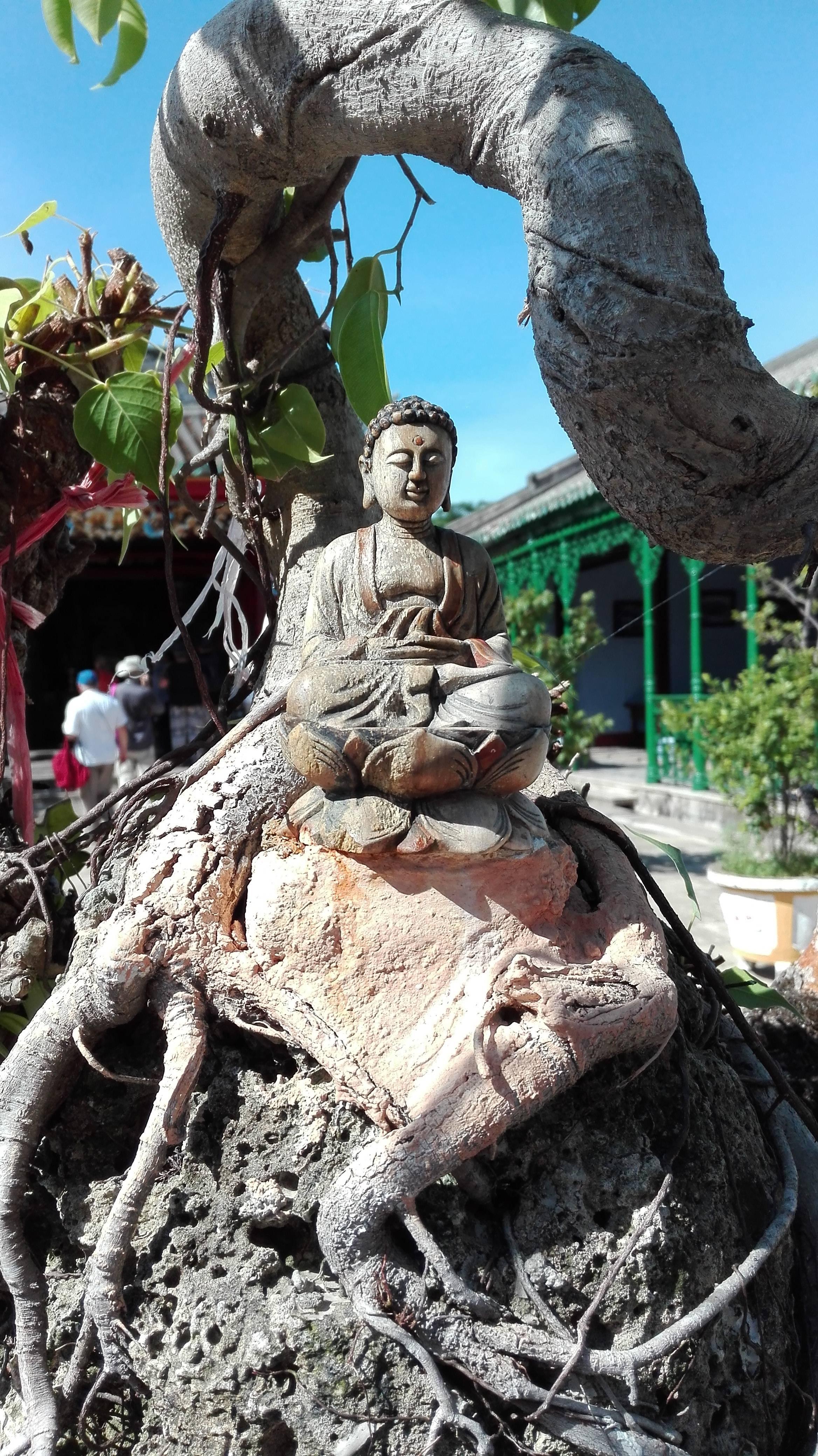 Photo 2: Hoi An et son vieux quartier chinois