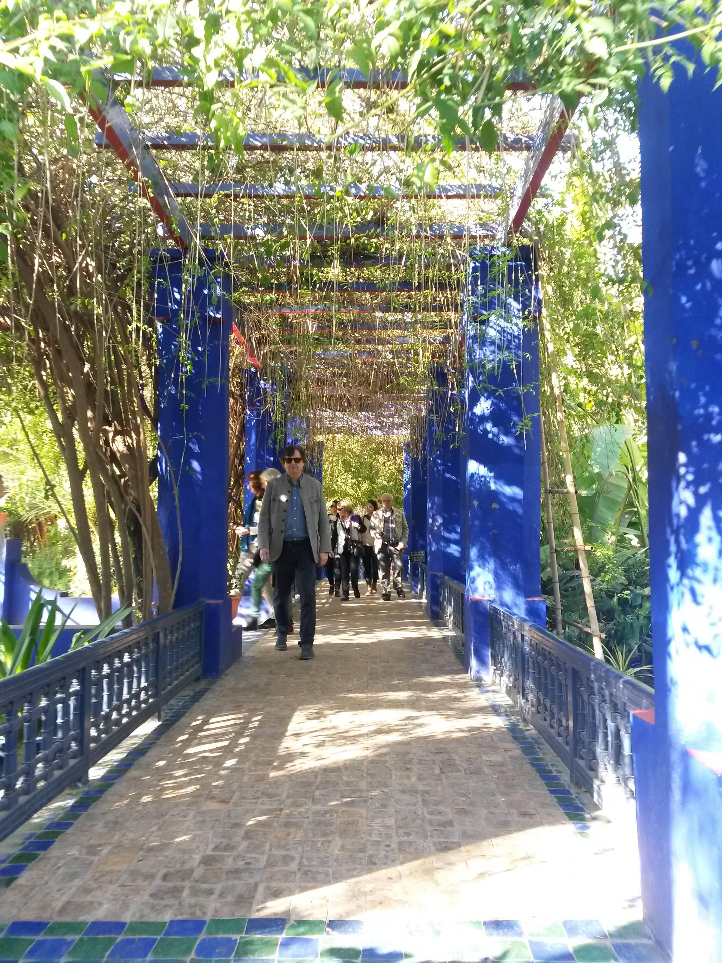Photo 1: Le jardin Majorelle en amoureux
