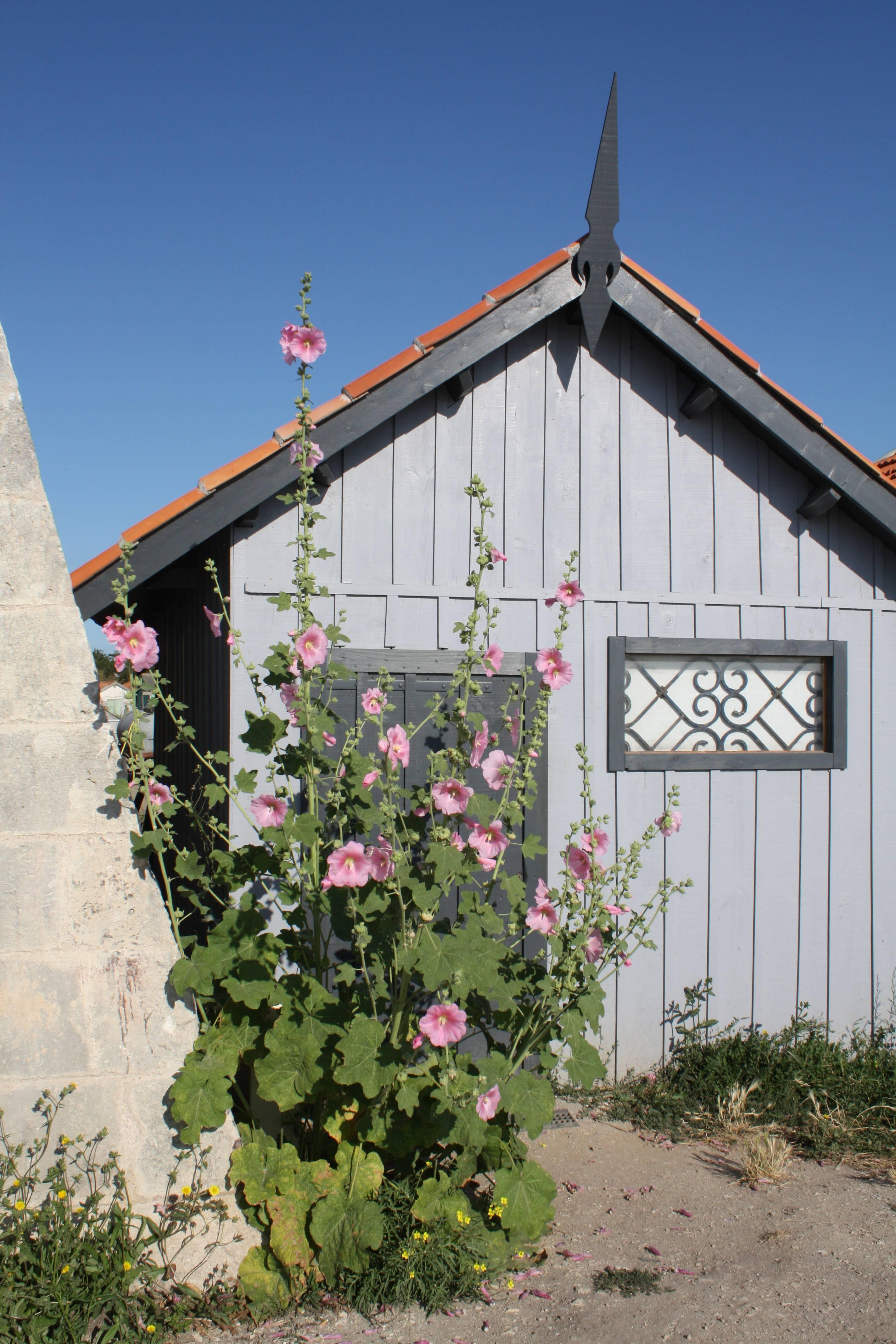 Photo 2: Les cabanes d'artistes du Château d'Oléron