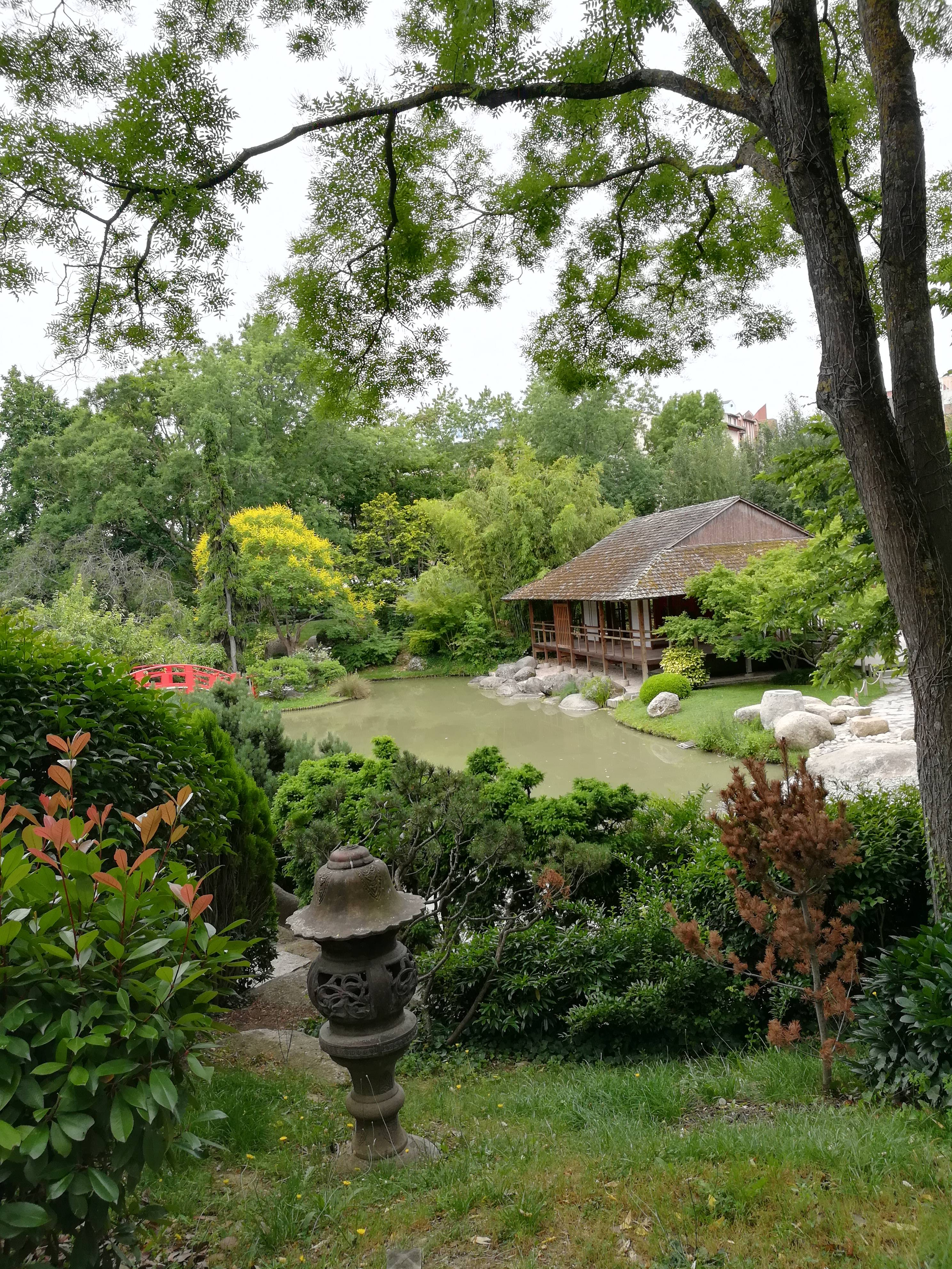 Photo 1: Jardin Japonais