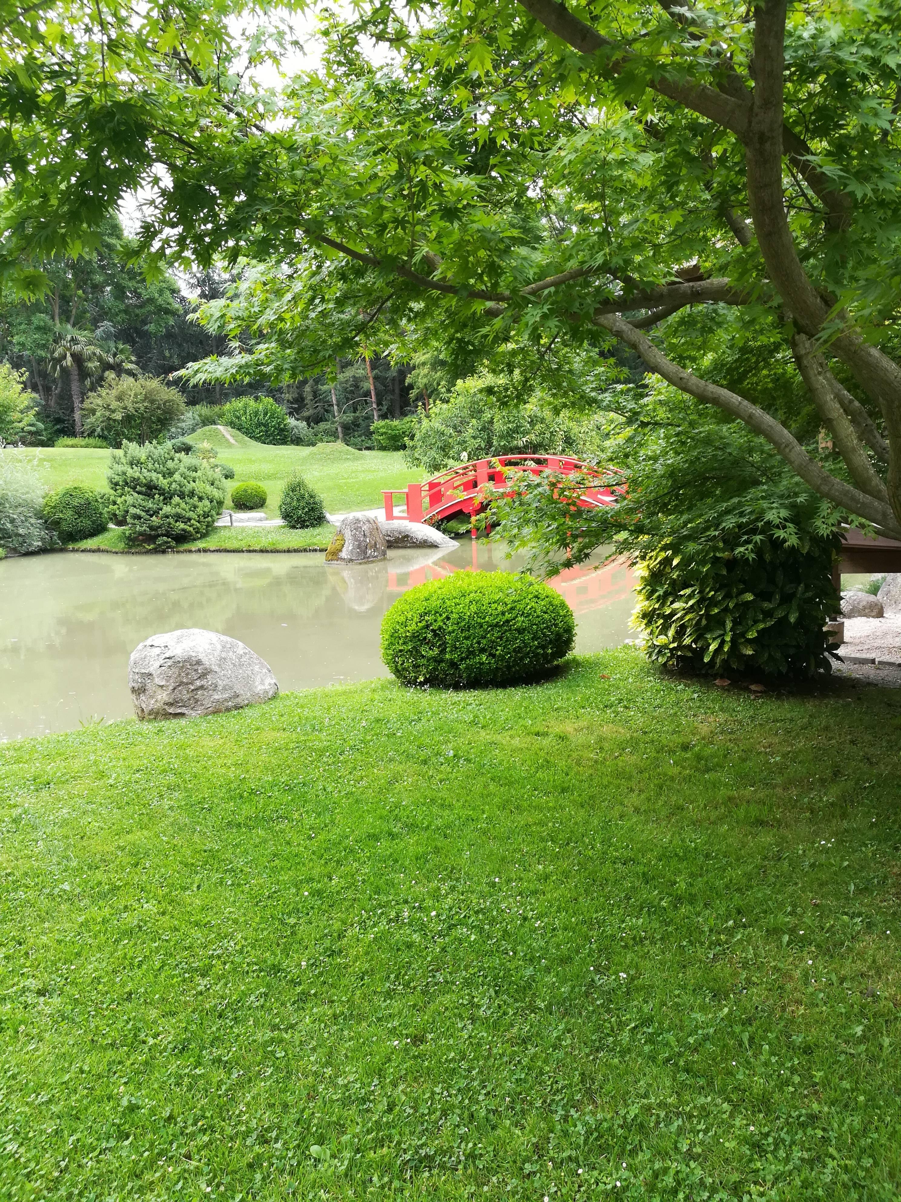 Photo 2: Jardin Japonais