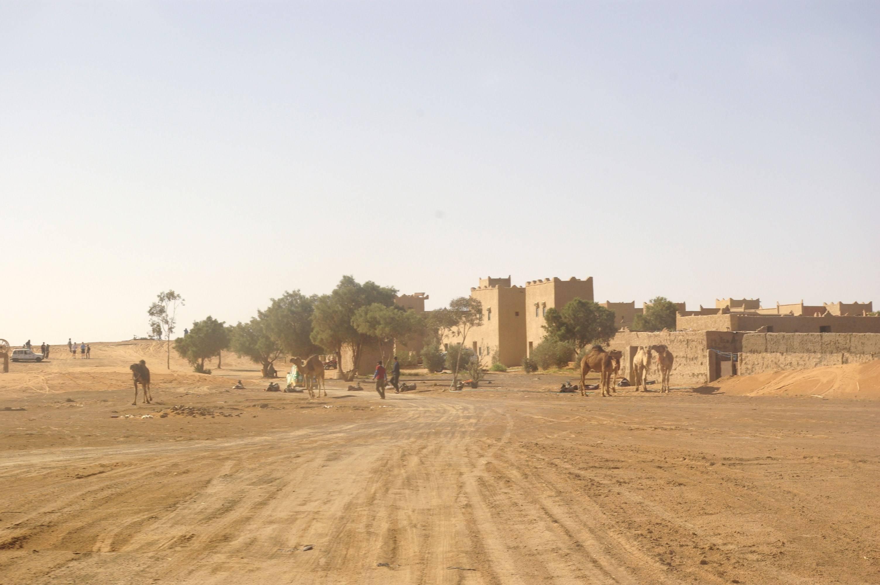 Photo 2: Merzouga, ses dunes et ses dromadaires