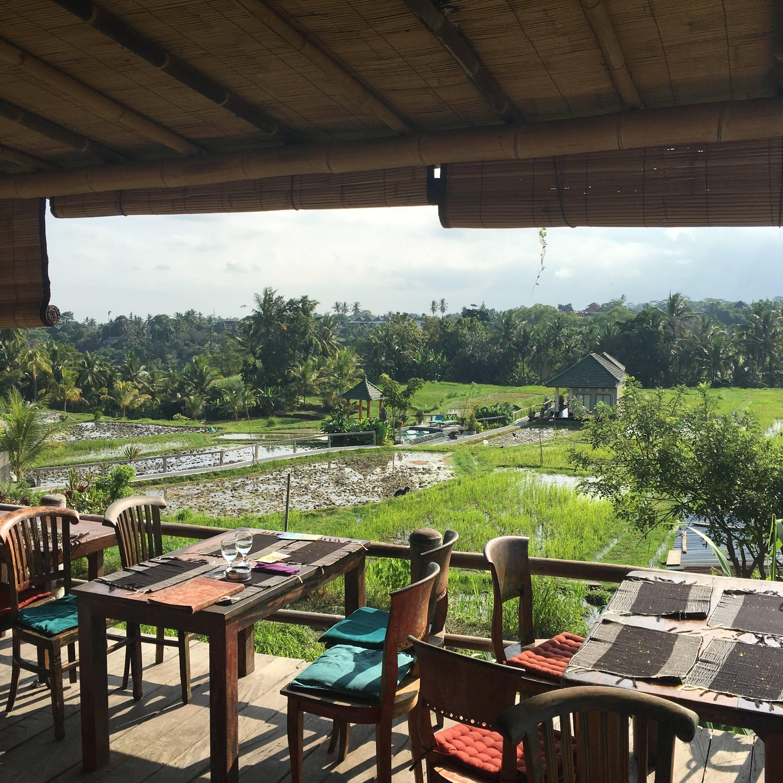 Photo 1: Ubud - Sari Organik, ou comment se perdre au milieu des rizières
