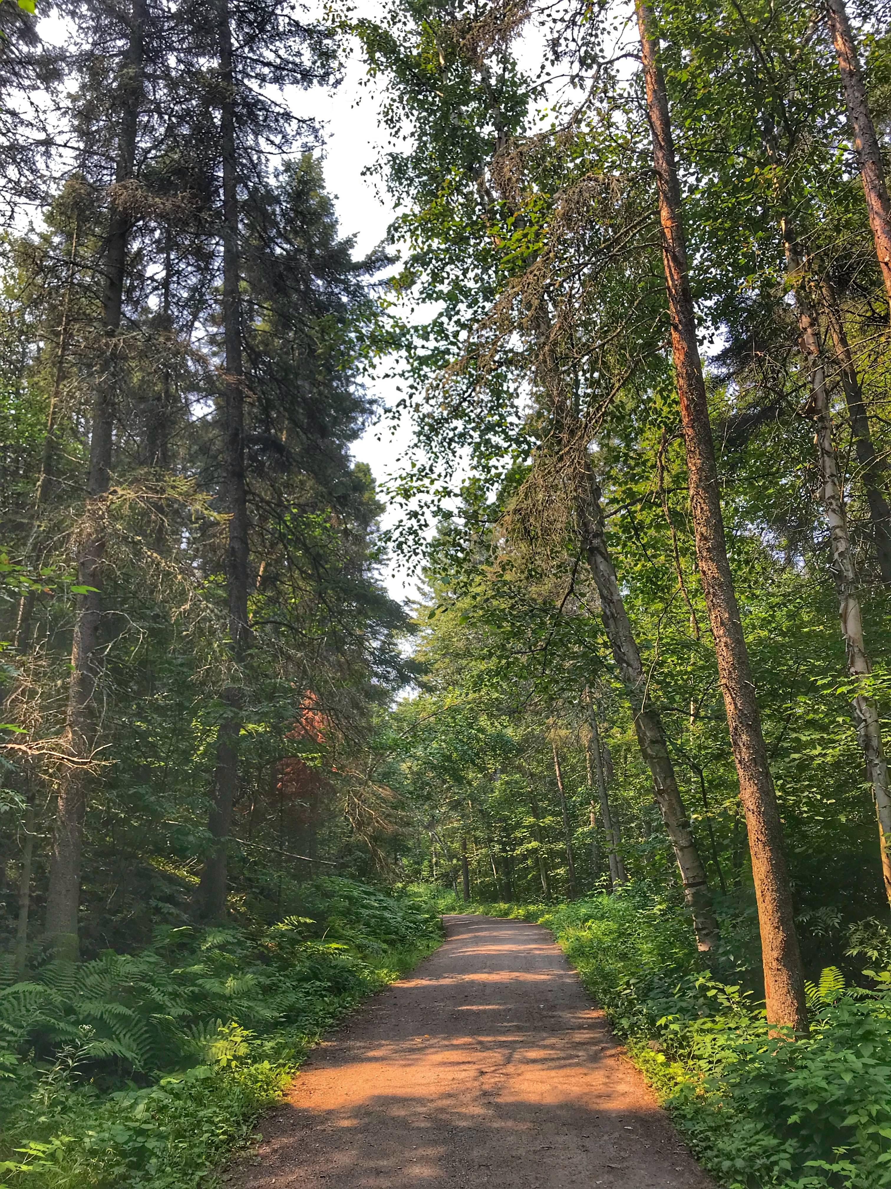Photo 3: Parc de la Rivière-du-Moulin