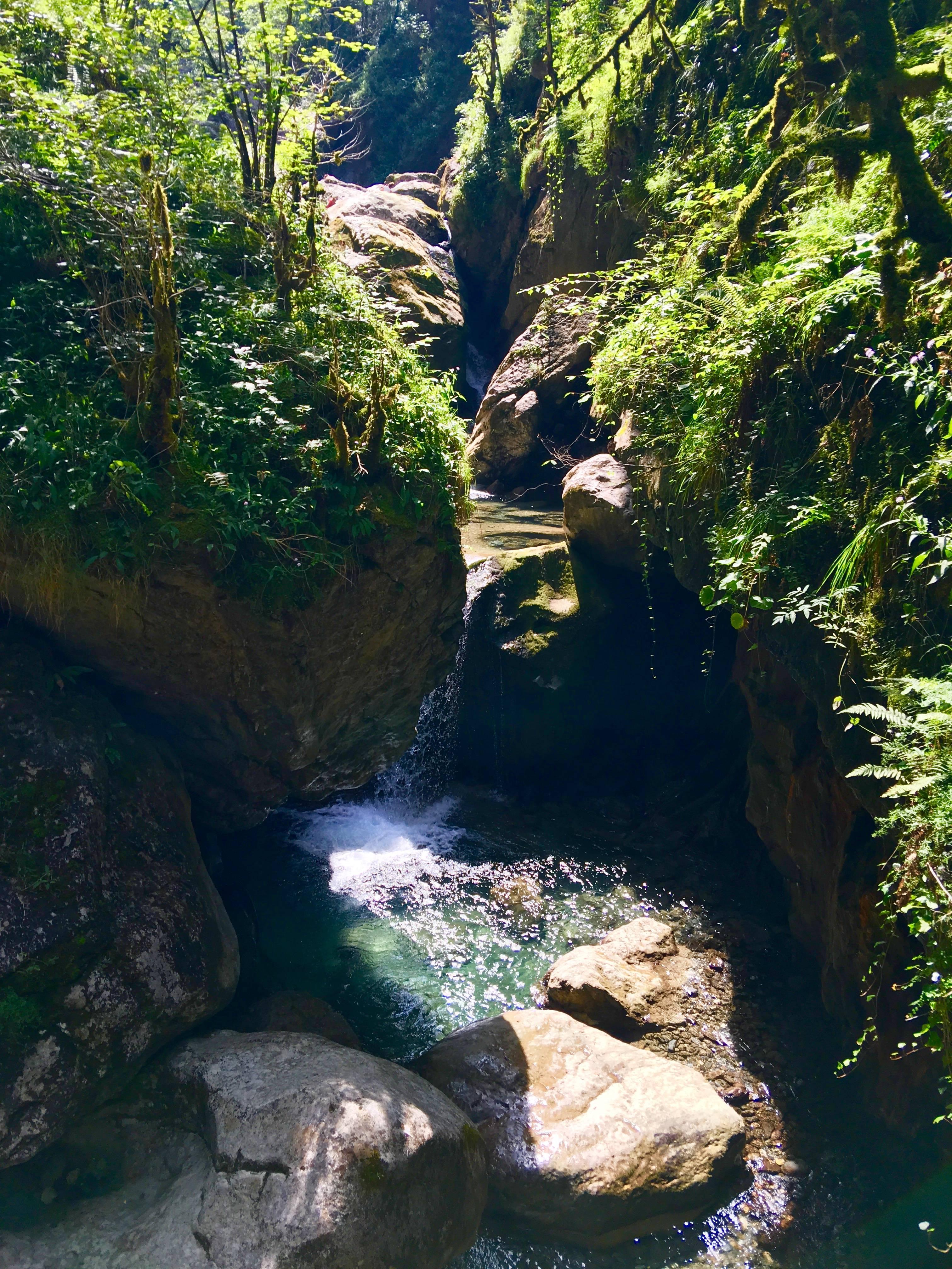 """Photo 1: """"La petite Amazonie du Pays Basque"""""""