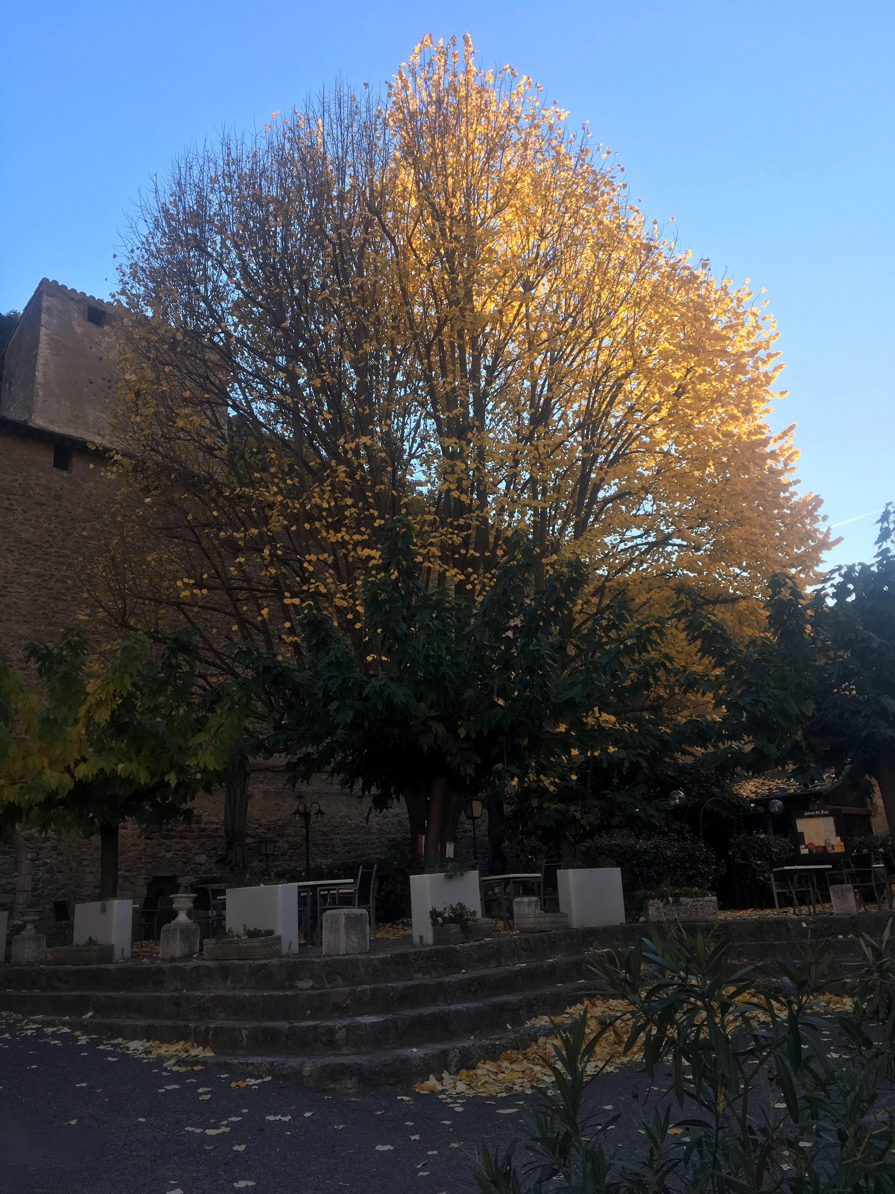 Photo 1: Villefranche-de-conflent