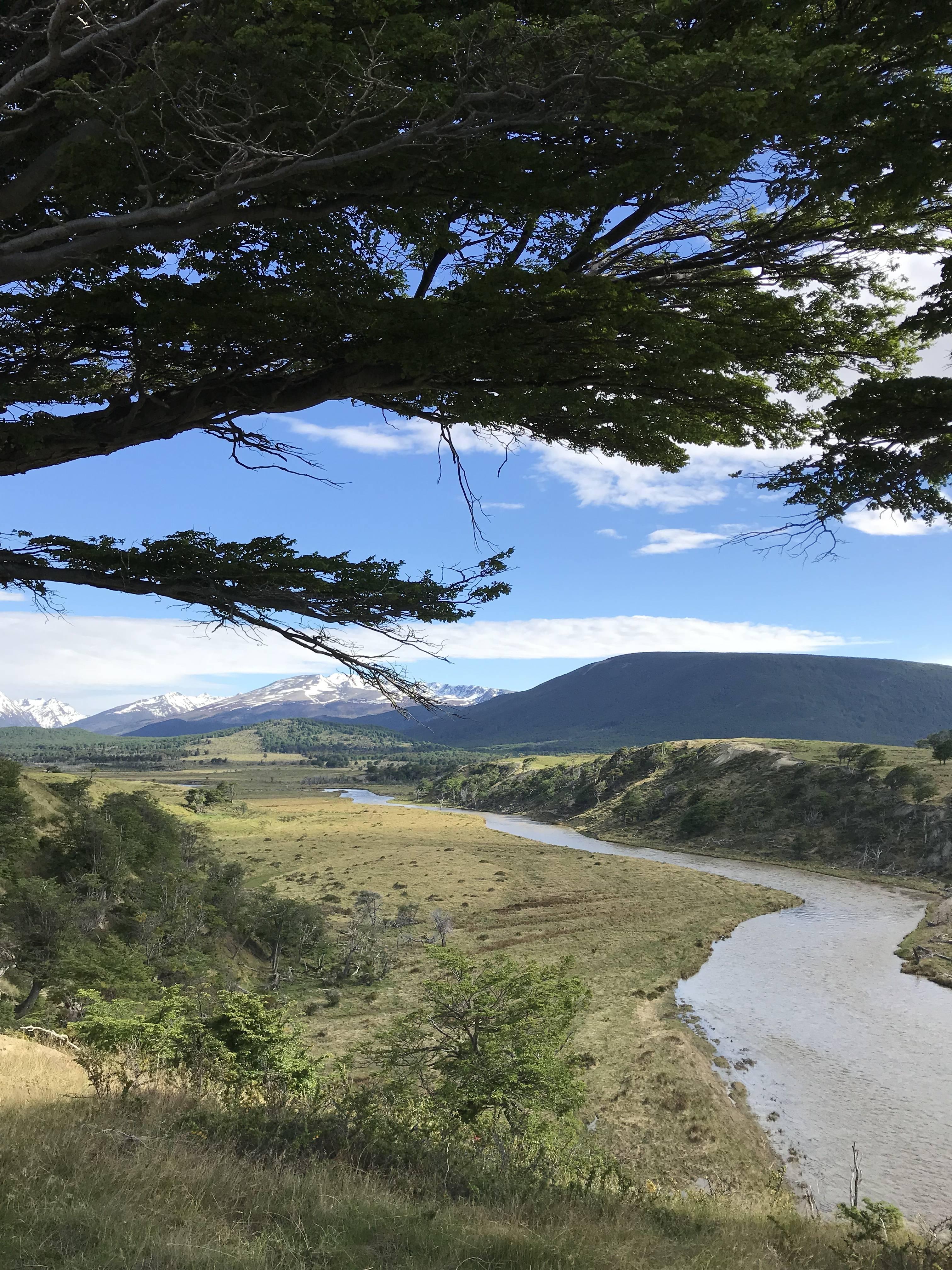 Photo 1: Le parc de la Terre de feu à Ushuaïa