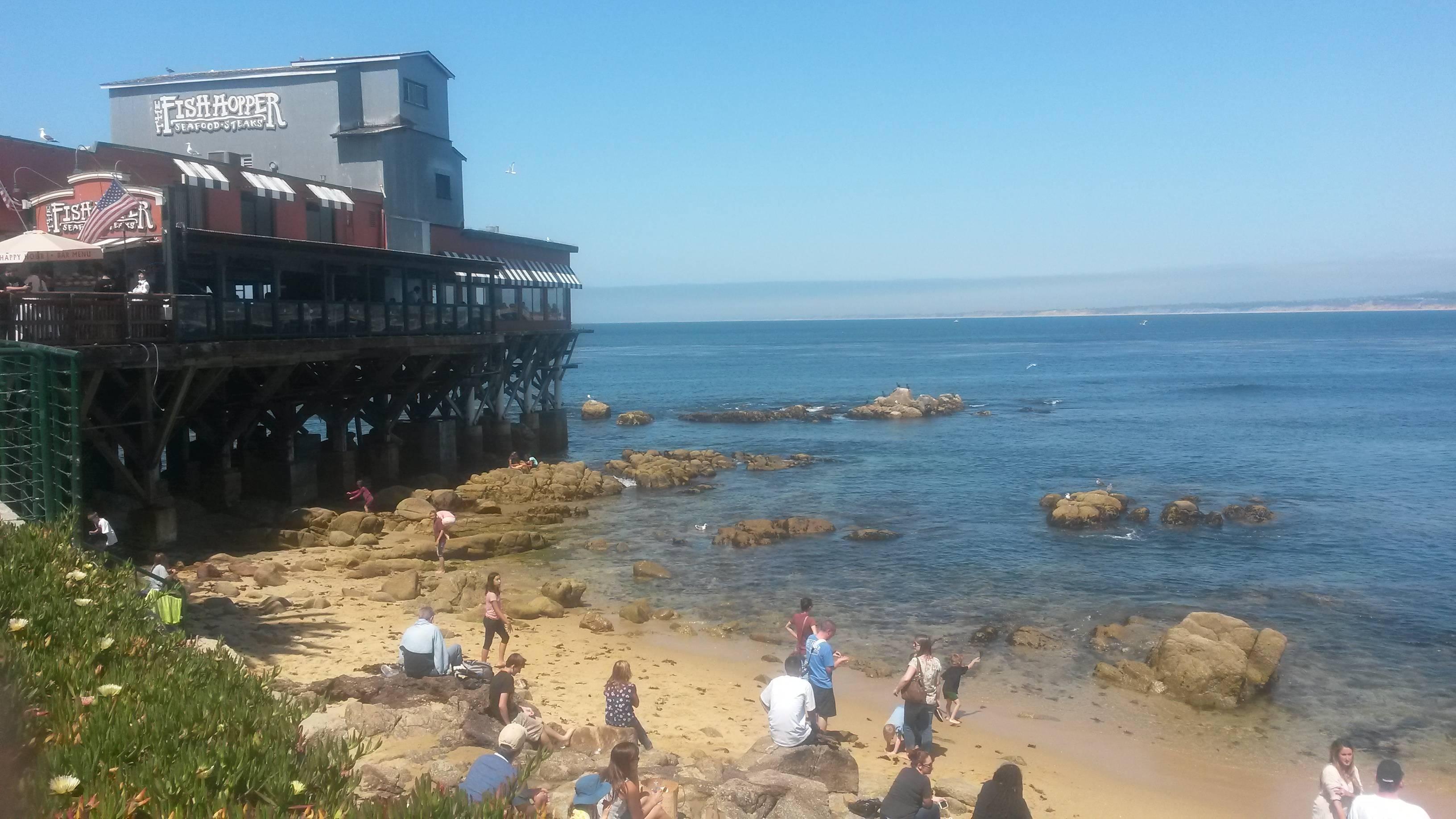 Photo 2: Monterey - de la conserverie à l'aquarium