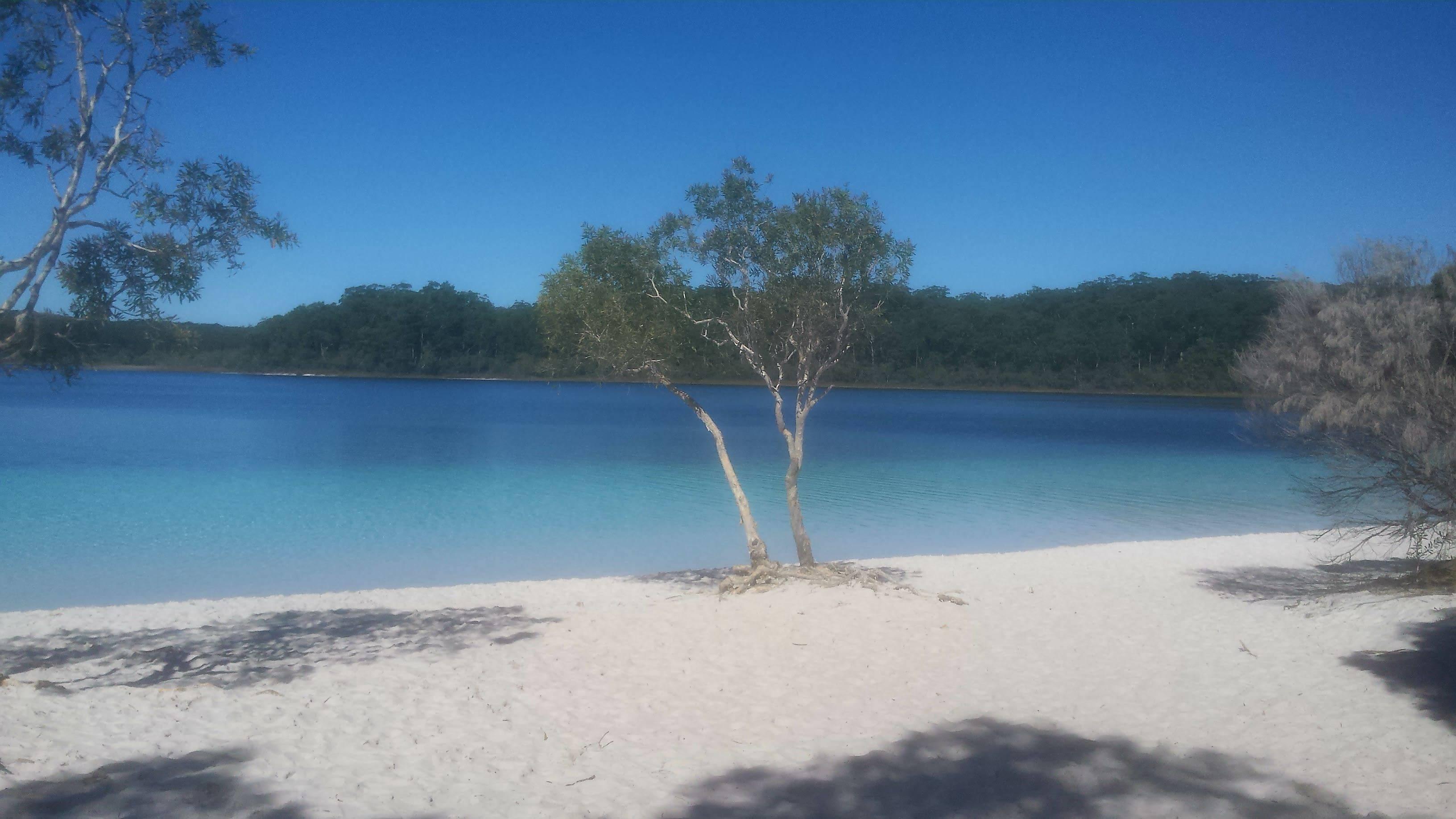 Photo 1: Fraser Island, un tour en 4x4 et des souvenirs inoubliables !