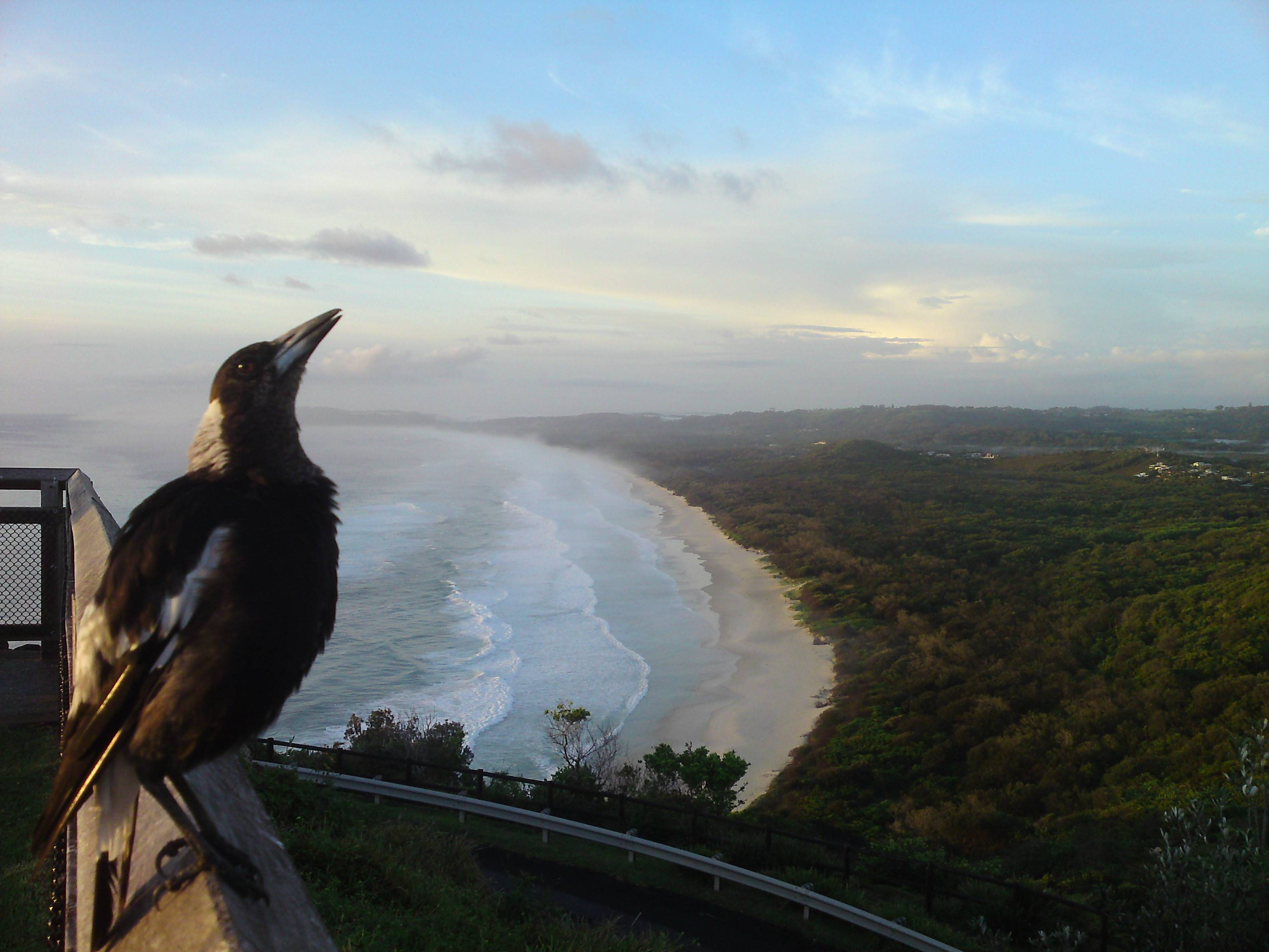 Photo 3: Byron Bay - relax & surf