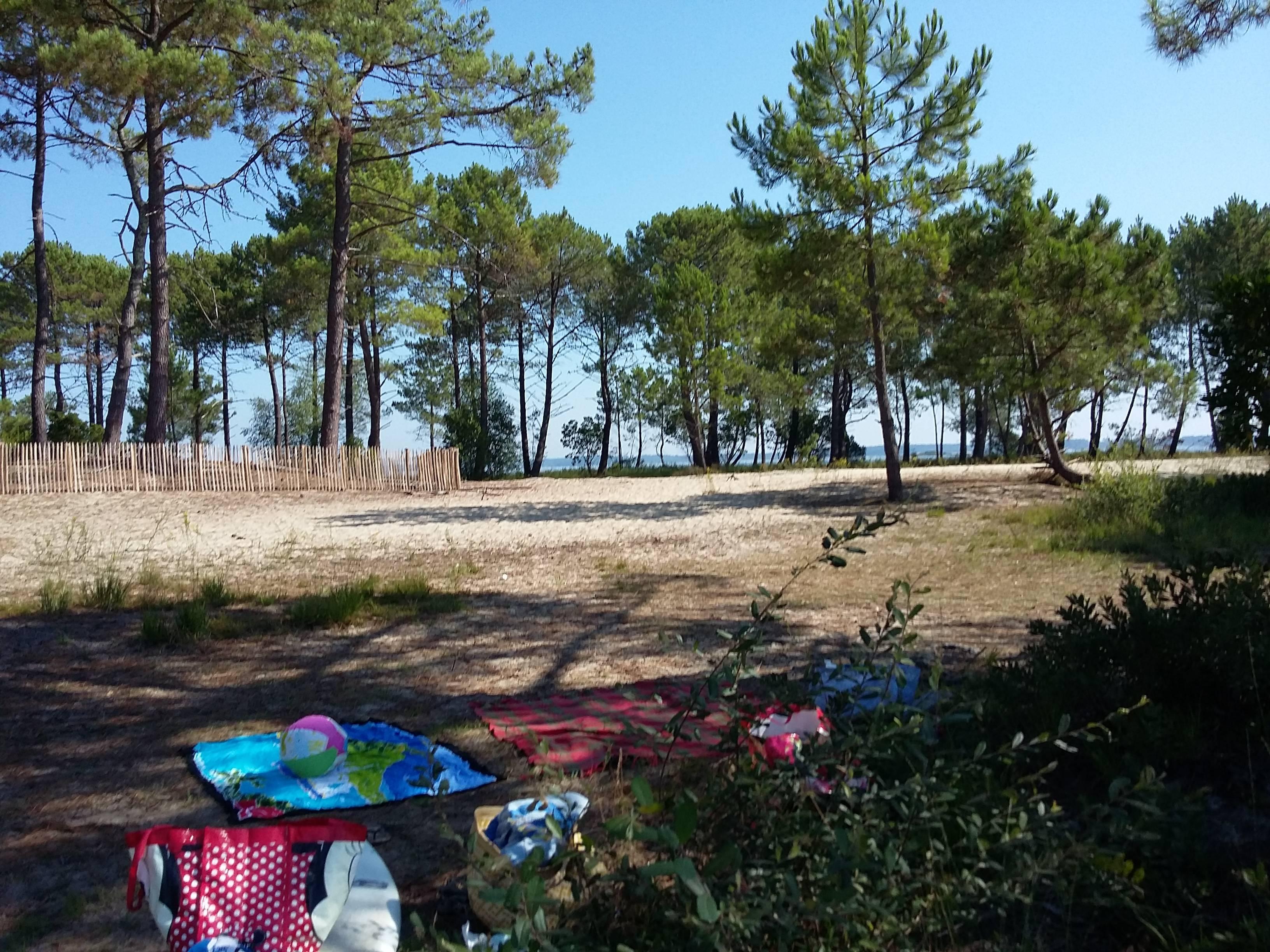 Photo 2: Sur la plage abandonnée au lac de lacanau