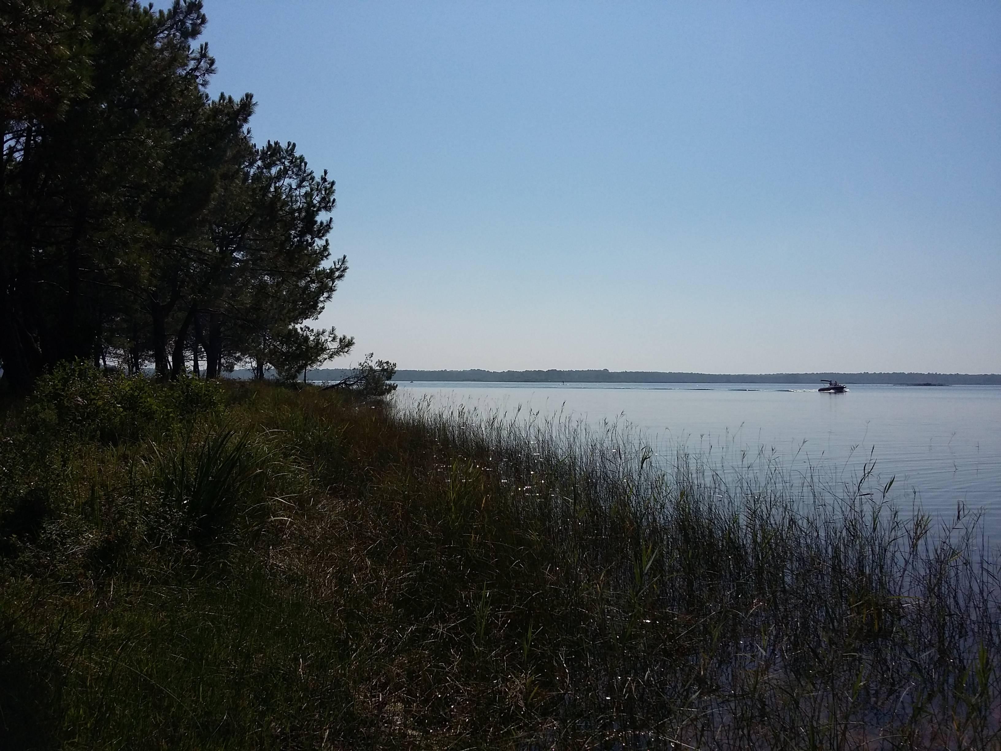 Photo 3: Sur la plage abandonnée au lac de lacanau