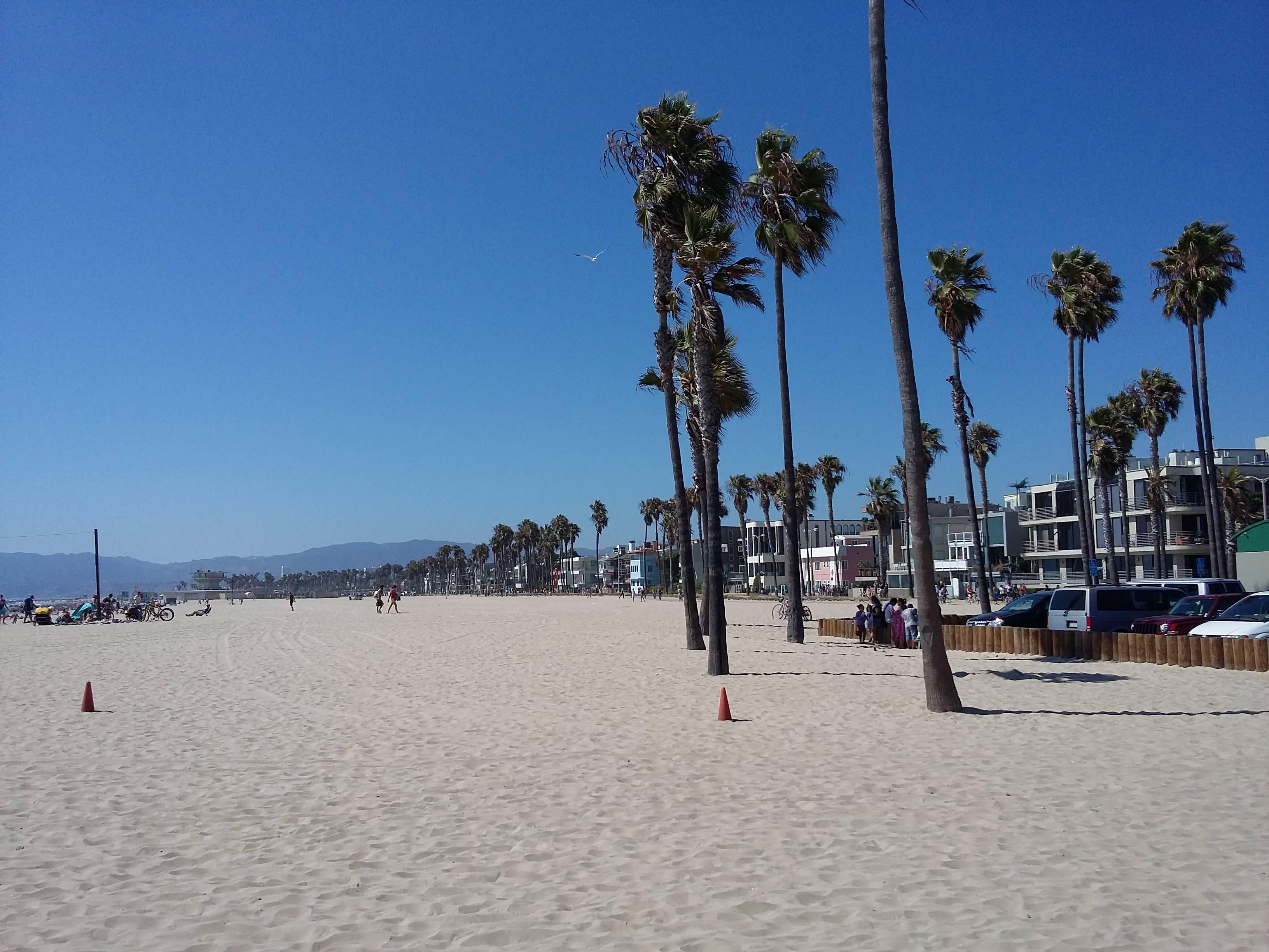 Photo 2: De Santa Monica à Venice beach en Vélo