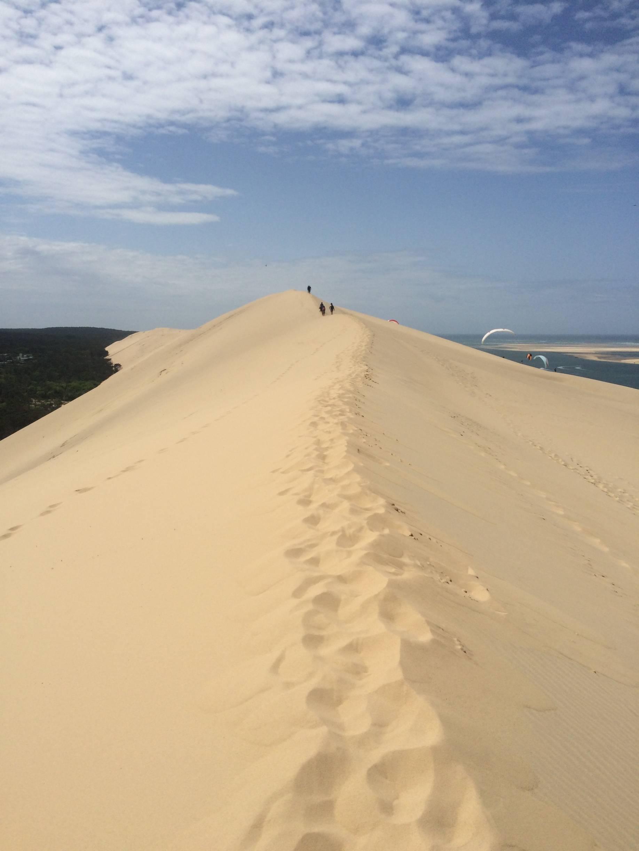 Photo 2: Entre Terre et Mer, sur la plus grande dune..