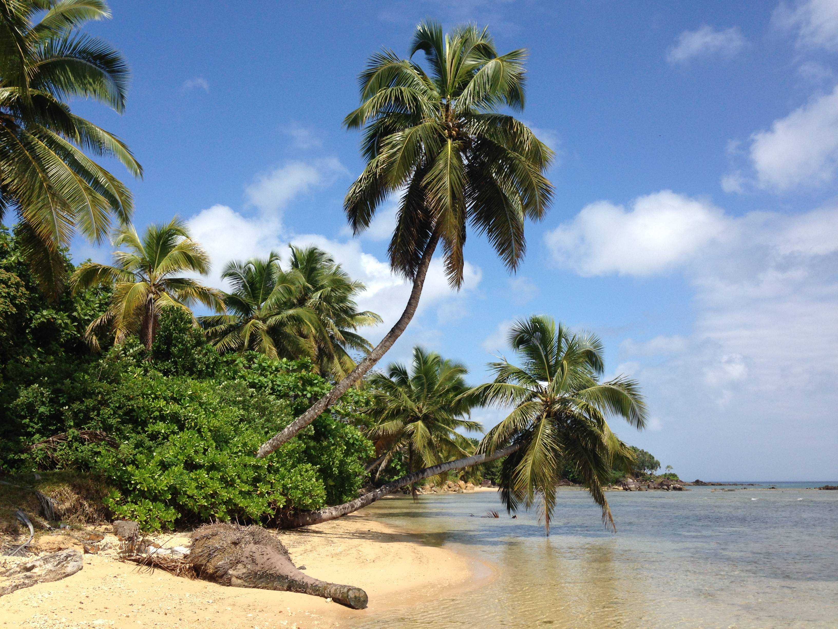 Photo 2: Ile de Sainte-Marie et Ile aux Nattes
