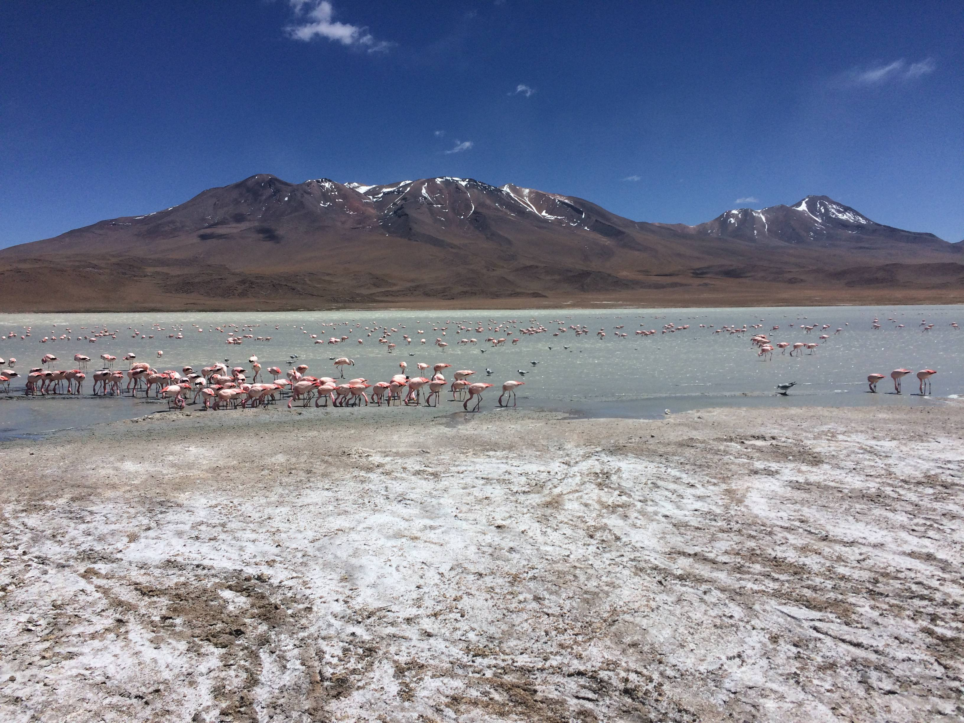 Photo 2: Salar d'Uyuni et Sud-Lipez