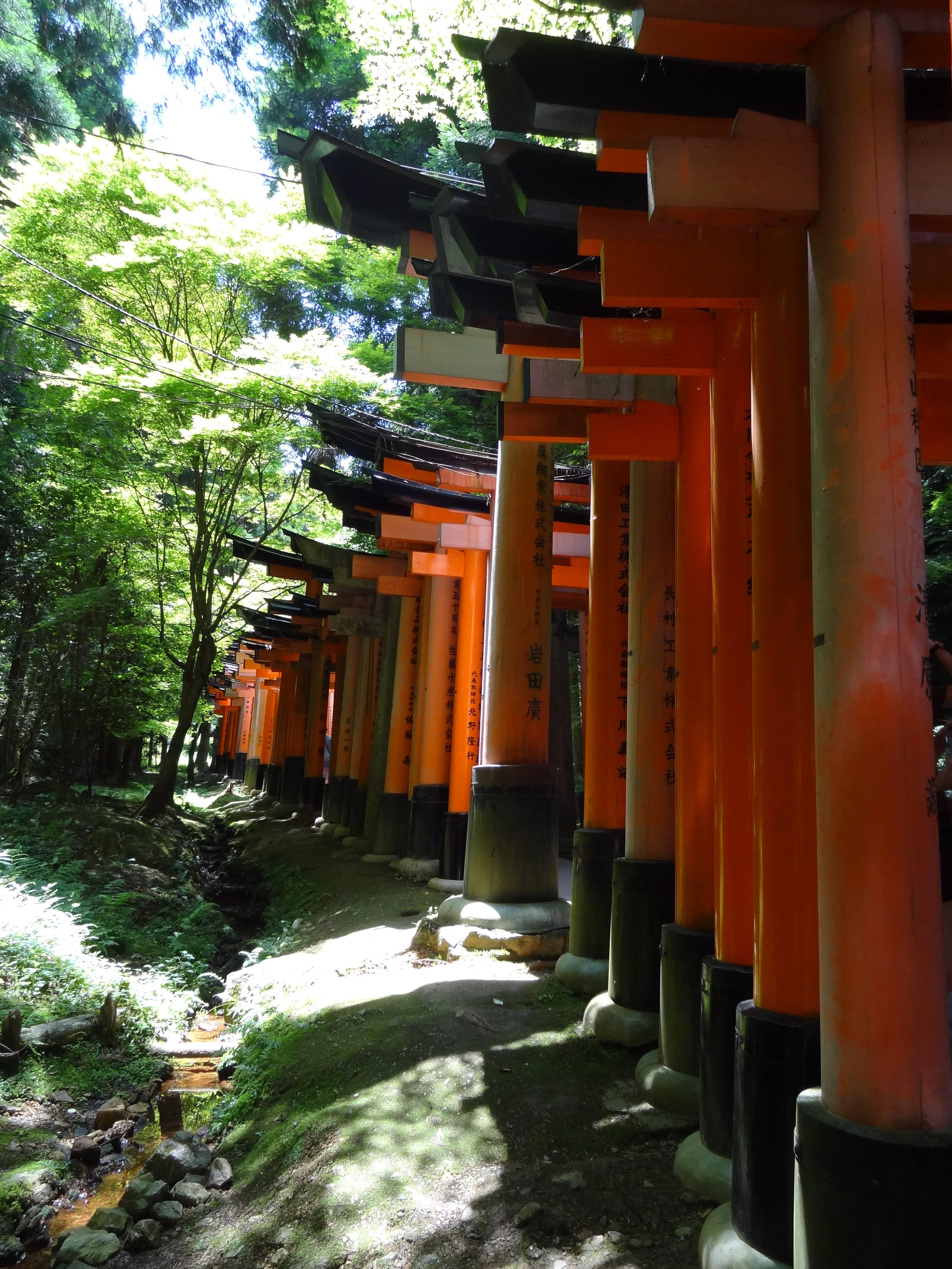 Photo 1: Le sanctuaire aux 10 000 torii, Fushimi Inari