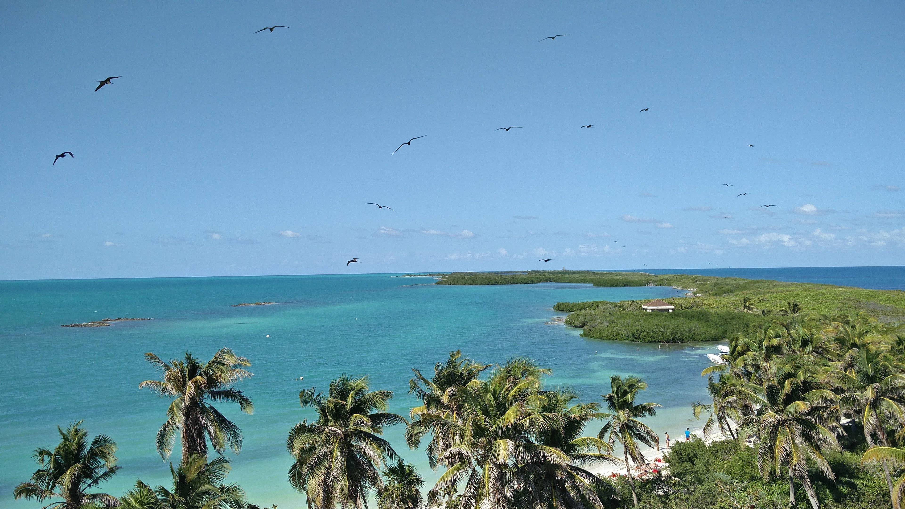 Photo 1: Isla Contoy - Un bout de paradis caché