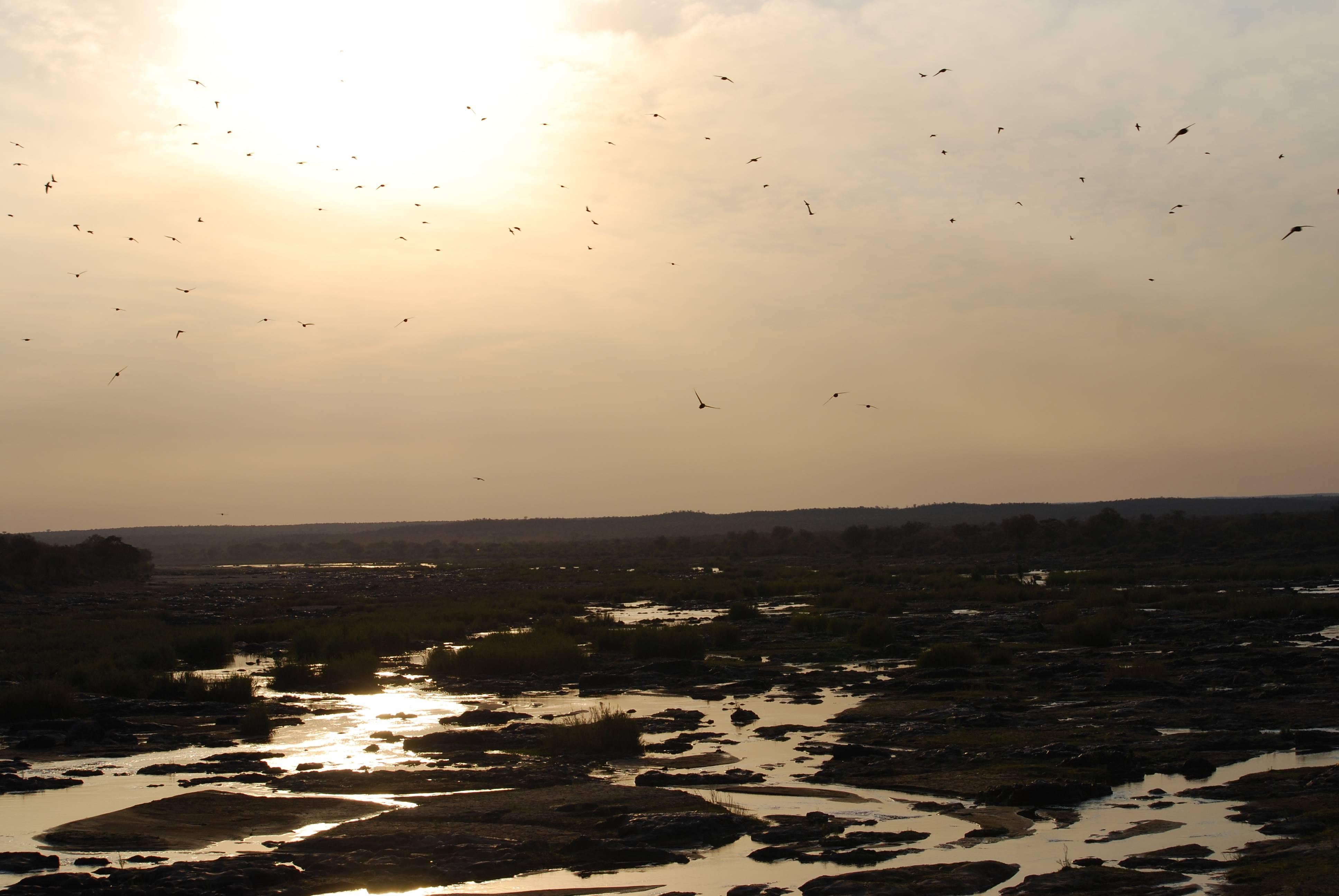 Photo 1: Olifants, un des meilleurs herbergements de Kruger !