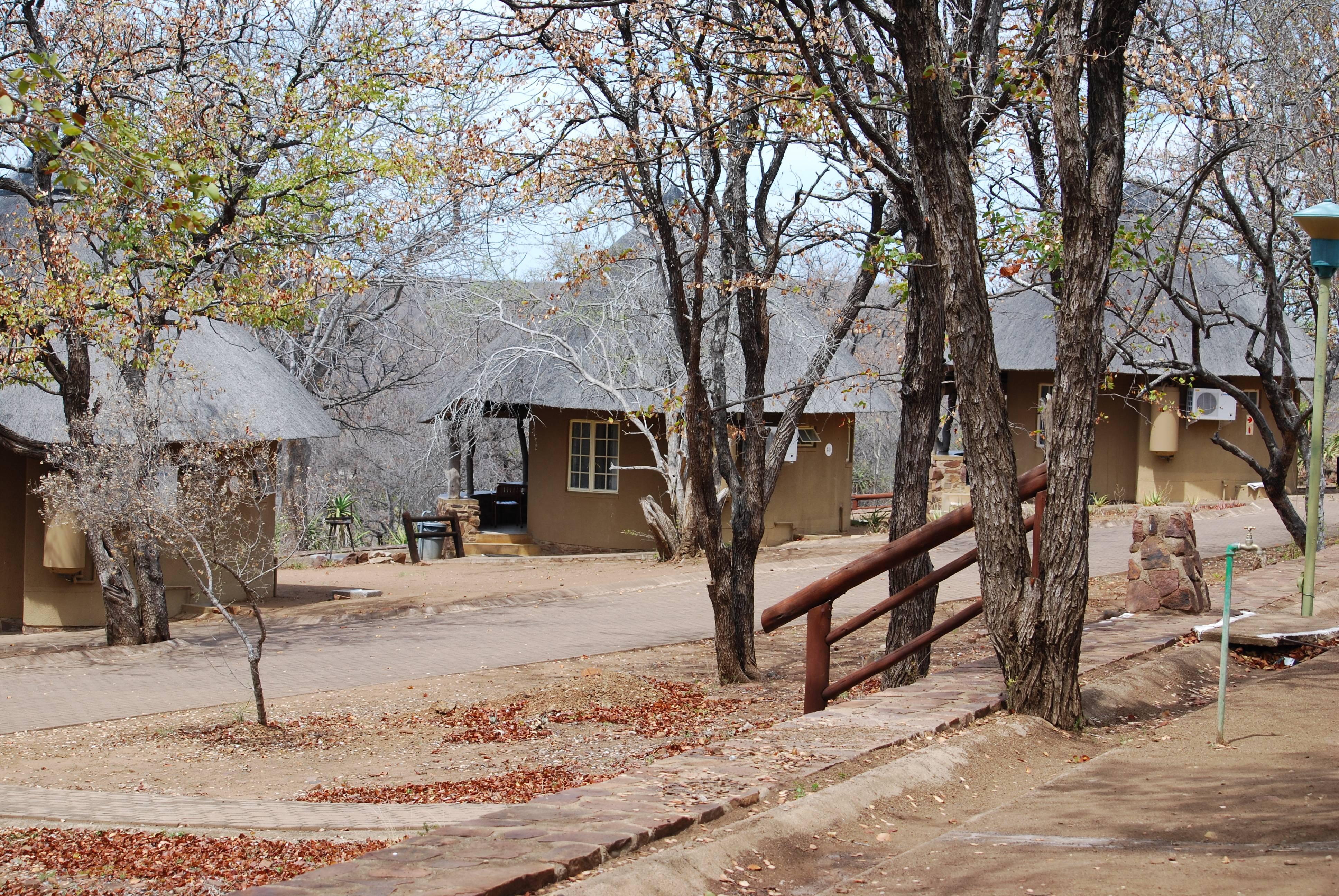 Photo 3: Olifants, un des meilleurs herbergements de Kruger !